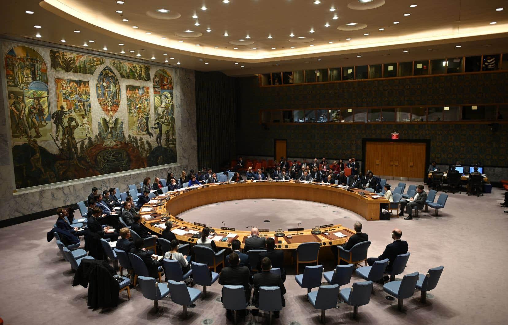 Le 17juin prochain, le Canada sera en lice avec l'Irlande et la Norvège pour deux sièges disponibles au Conseil de sécurité.