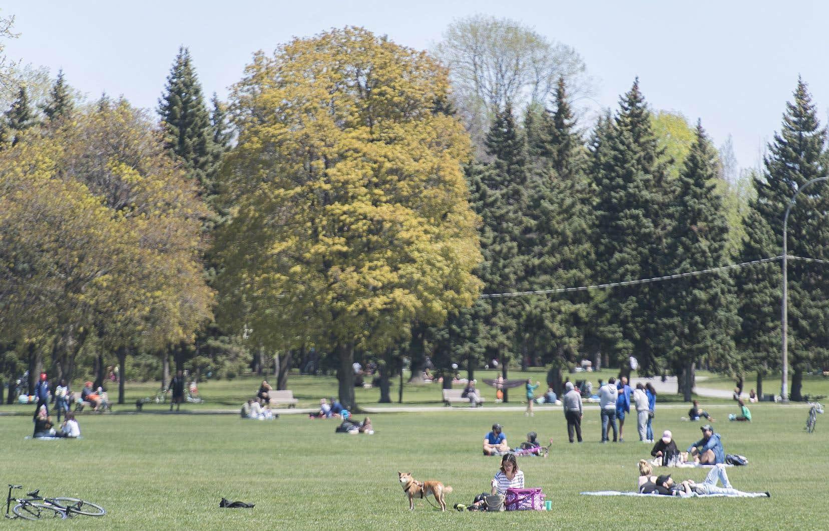 La VG note qu'en octobre 2019, 6,1% du territoire de l'agglomération de Montréal était protégé alors que le Schéma d'aménagement vise un taux de 10%.