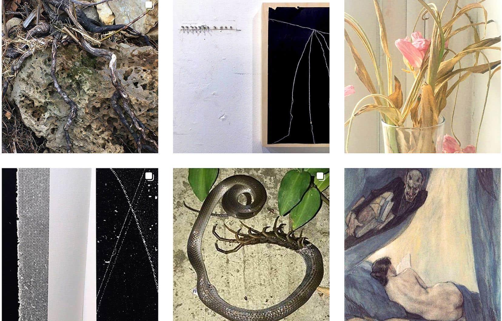 «Instagram, c'est centré sur le travail. Je publie et assume que c'est pour être vu de façon professionnelle», commente Jérôme Nadeau, issu du programme de maîtrise en photographie de l'Université Concordia, cuvée 2016.