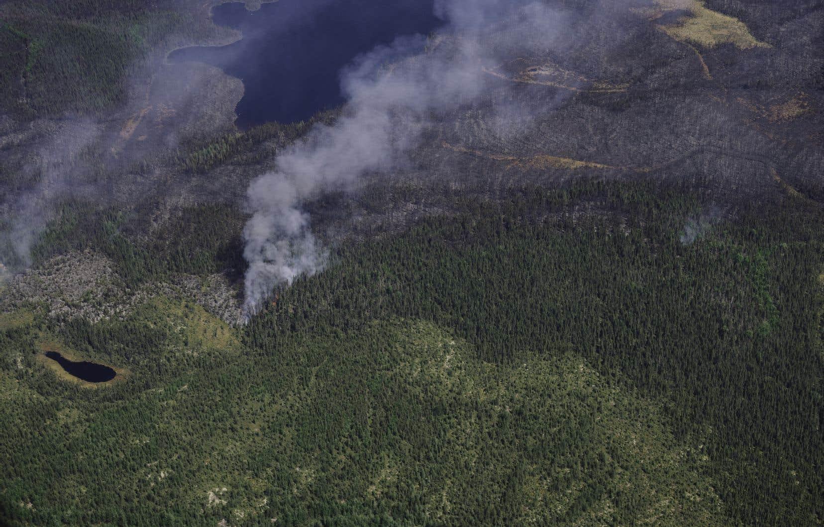 Selon la SOPFEU, le feu de forêt menace des zones de villégiatures où se trouvent des chalets.