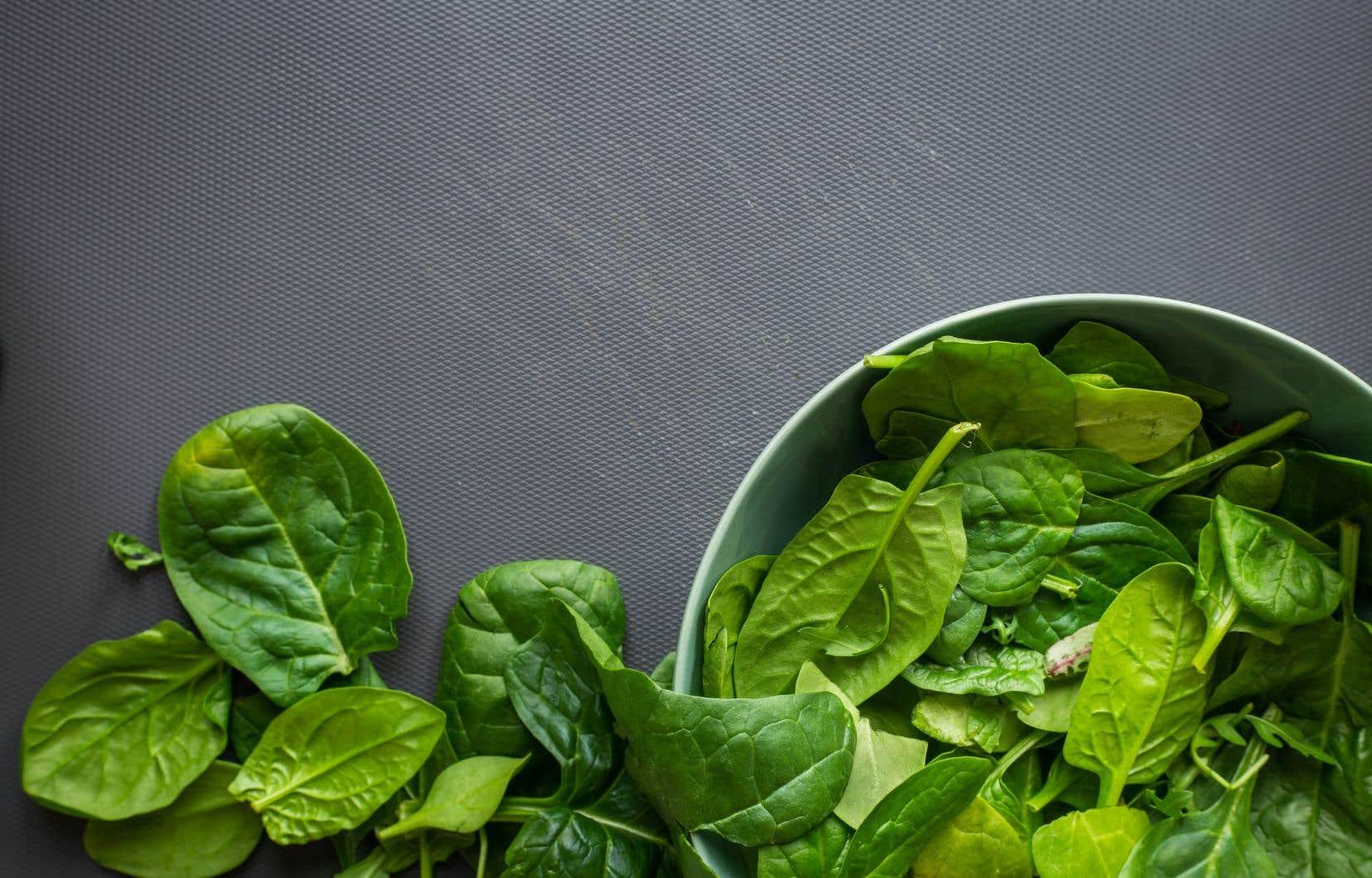 Qu'on l'apprête cuit ou cru, l'épinard demeure une vedette de nos tables estivales tant pour son bon goût que pour ses qualités nutritives.
