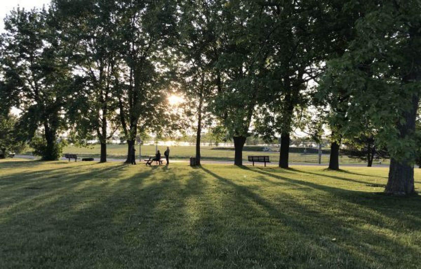Le conseil municipal de Salaberry-de-Valleyfield a autorisé la vente de près des trois quarts de la superficie du parc des Mouettes au gouvernement, pour un montant de 2,6millions. Québec compte y construire une Maison des aînés.