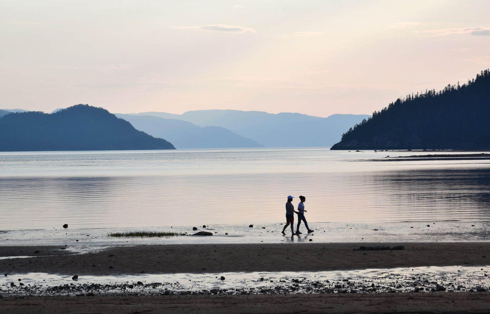 Le Québec s'est engagé, en 2010, à protéger 10% de ses milieux marins et 17% des milieux terrestres d'ici la fin de 2020. Sur la photo, le Parc national du Fjord du- Saguenay.