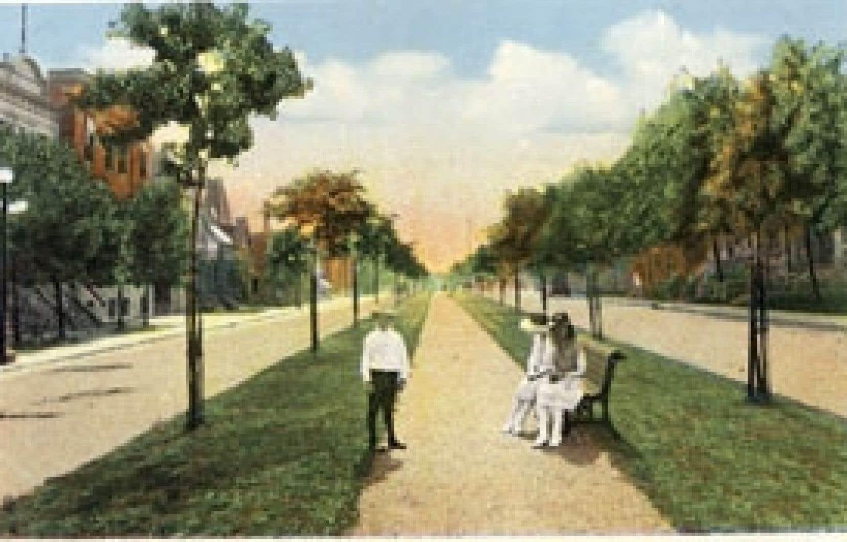 Le boulevard Pie-IX représenté sur une carte postale, à l'époque où une allée piétonnière avait été aménagée au milieu du terre-plein central.