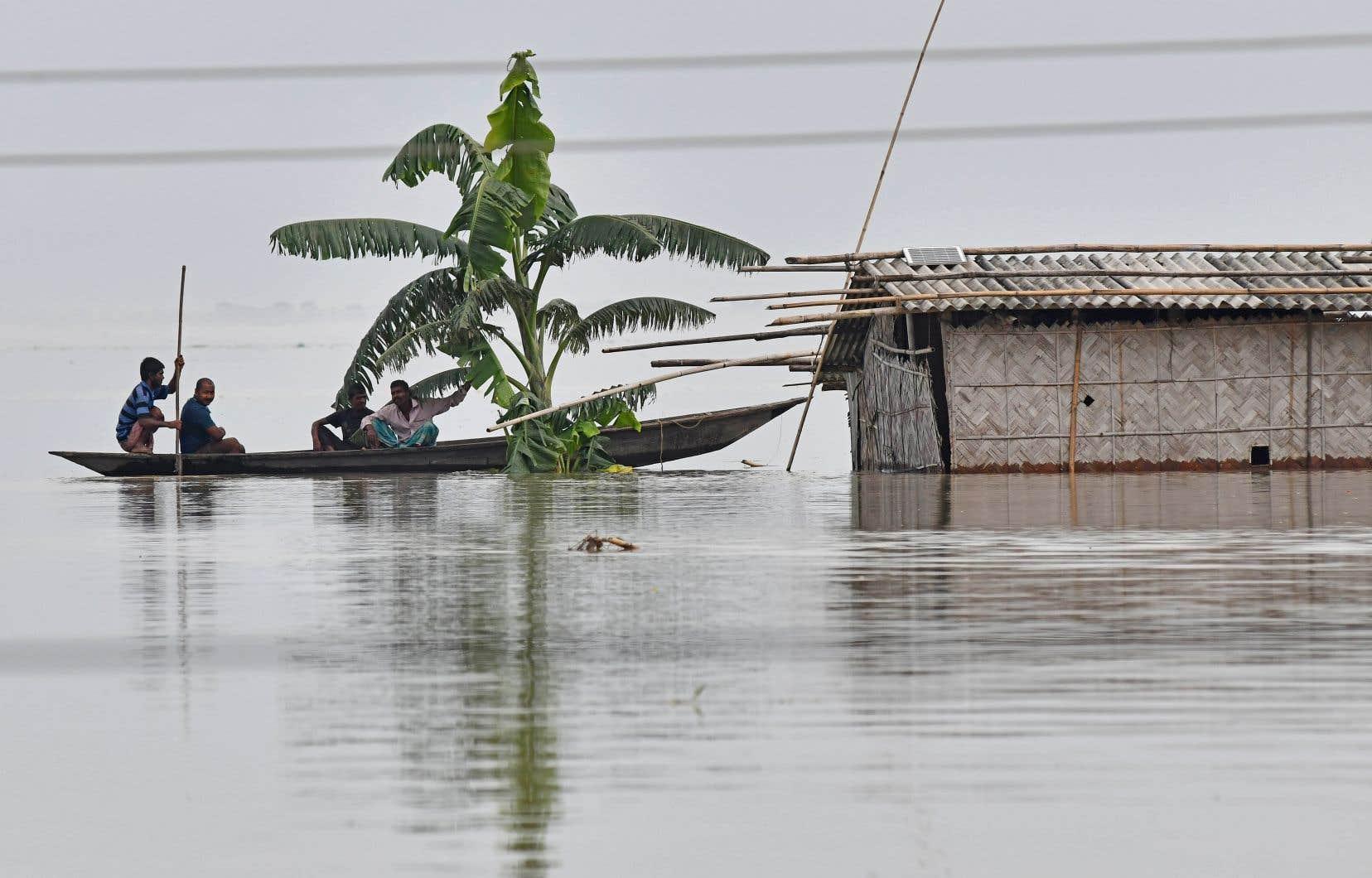Dans le nord-est de l'Inde, des maisons et des localités où vivent plus de quatre millions de personnes ont été inondées ou endommagées par les précipitations torrentielles.