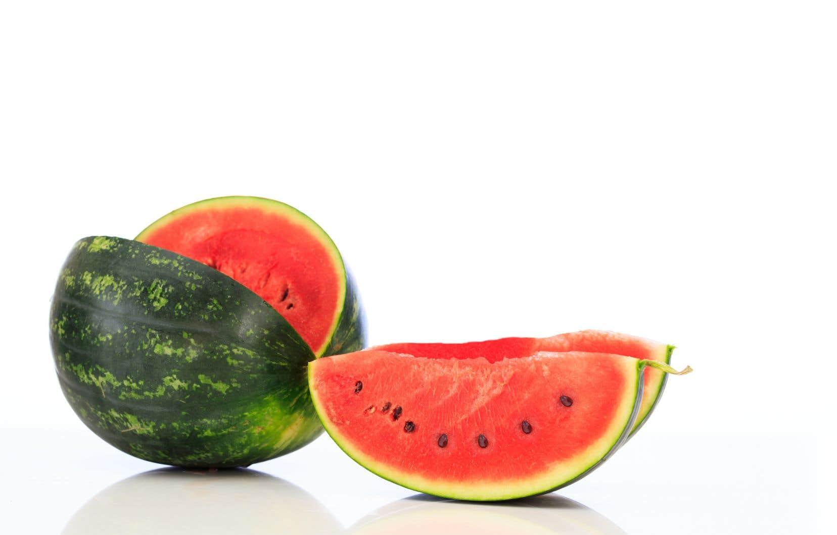 Le melon d'eau, un indispensable des chaudes journées d'été!