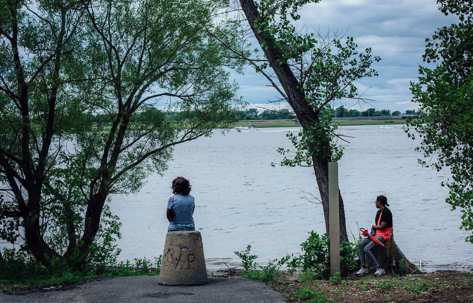 La pandémie a placé l'été montréalais sur une étrange trajectoire cette année. Sur la photo, le parc du Bout-de-l'Île, à Pointe-aux-Trembles.