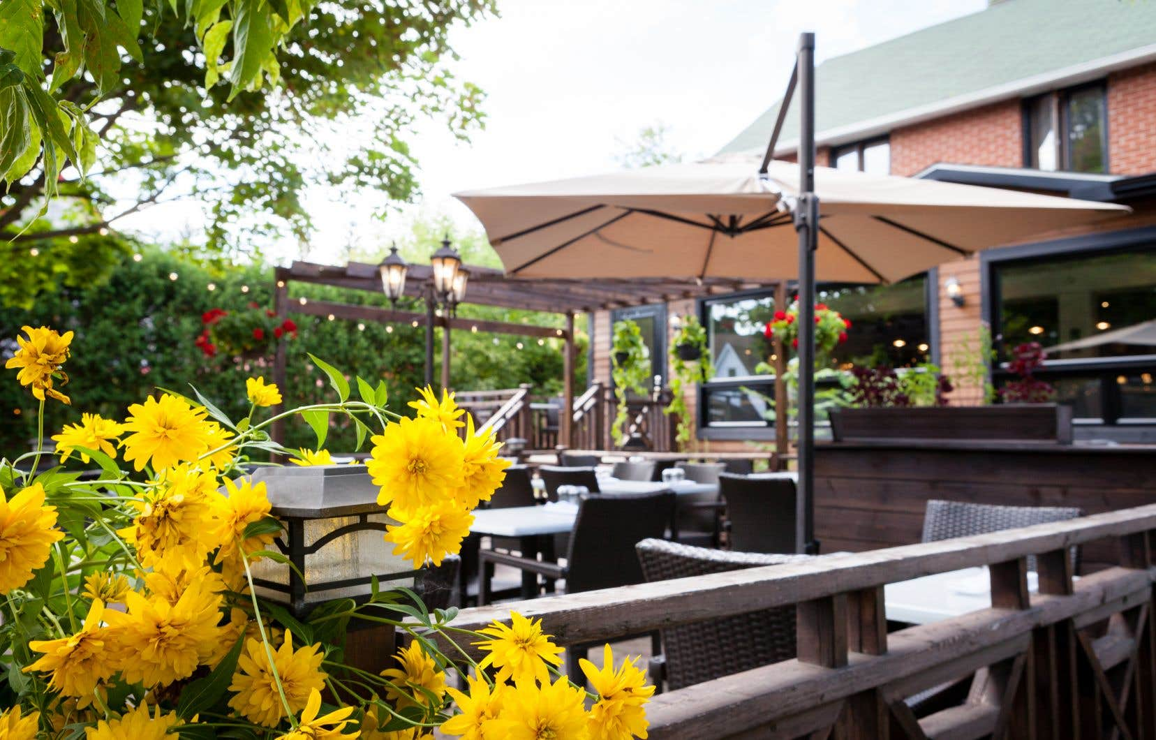 La terrasse de l'Outarde jaune, à Bromont