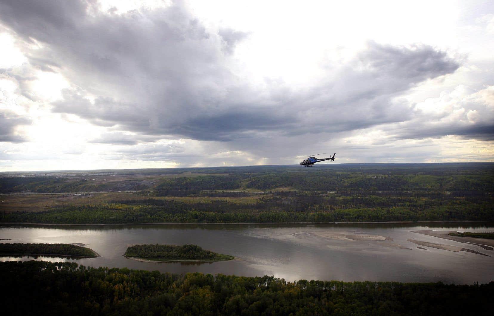 Aucune étude n'est prévue dans les environs du principal affluent de la rivière Athabasca, dans les zones humides ou parmi les populations de poissons et d'insectes.