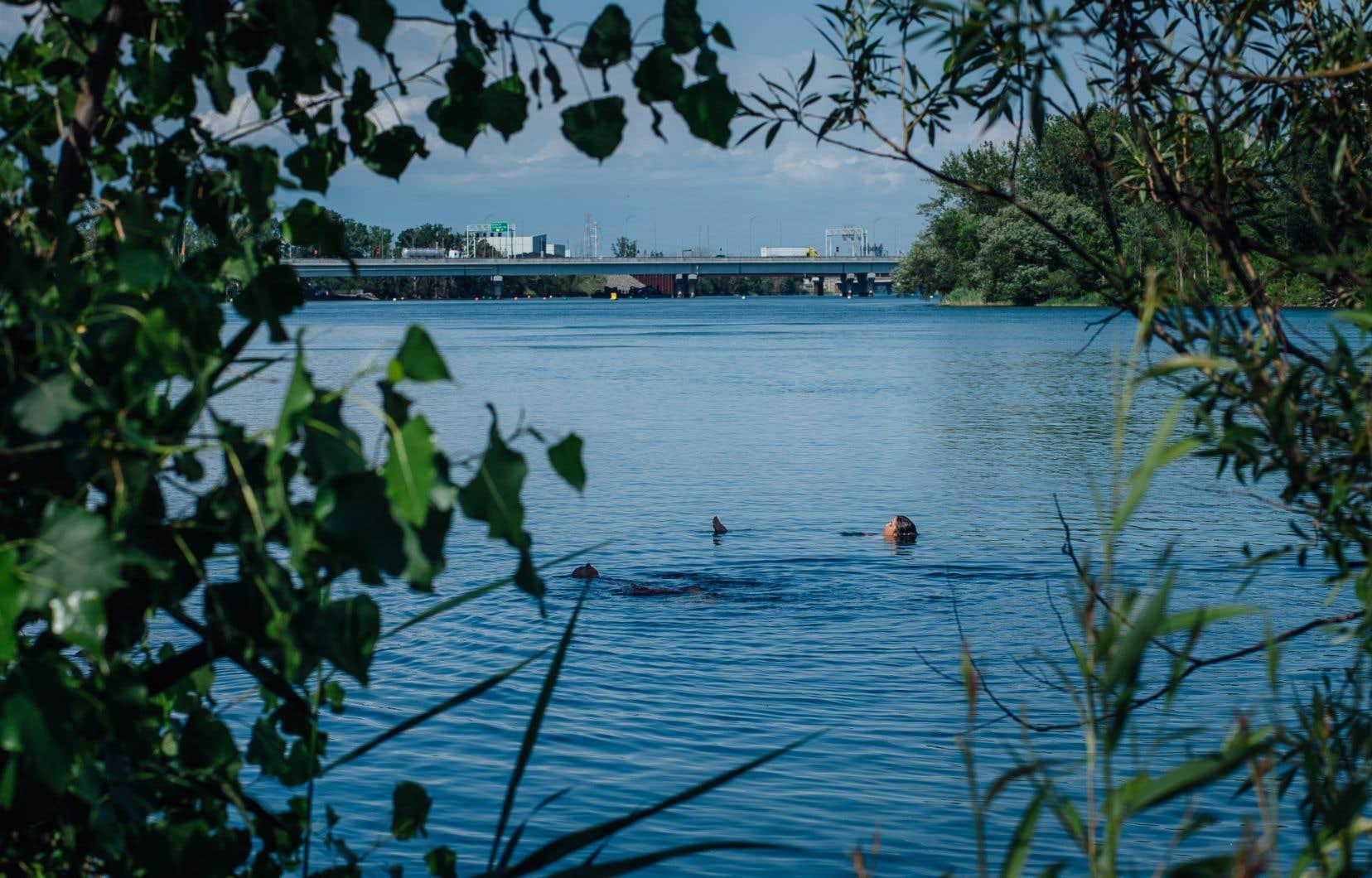«Ce manque d'accès public est d'autant plus ironique que les lacs foisonnent au Québec», soulignent les auteurs.