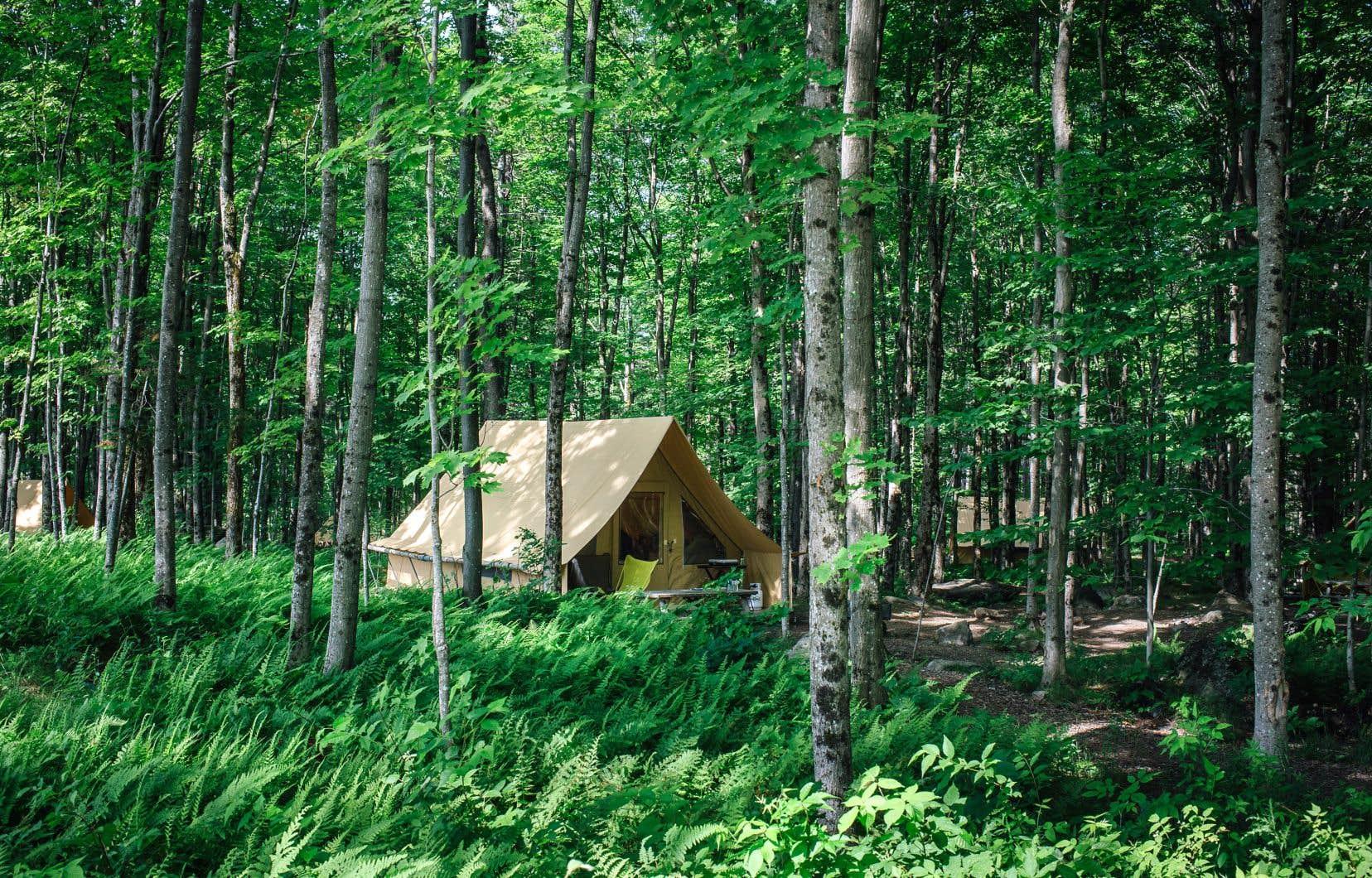 C'est au bout du chemin Maple, à Sutton, dans la région touristique des Cantons-de-l'Est, que se trouve Huttopia Sutton, un des royaumes du «glamping» au Québec. Sur la photo, une tente prêt-à-camper.