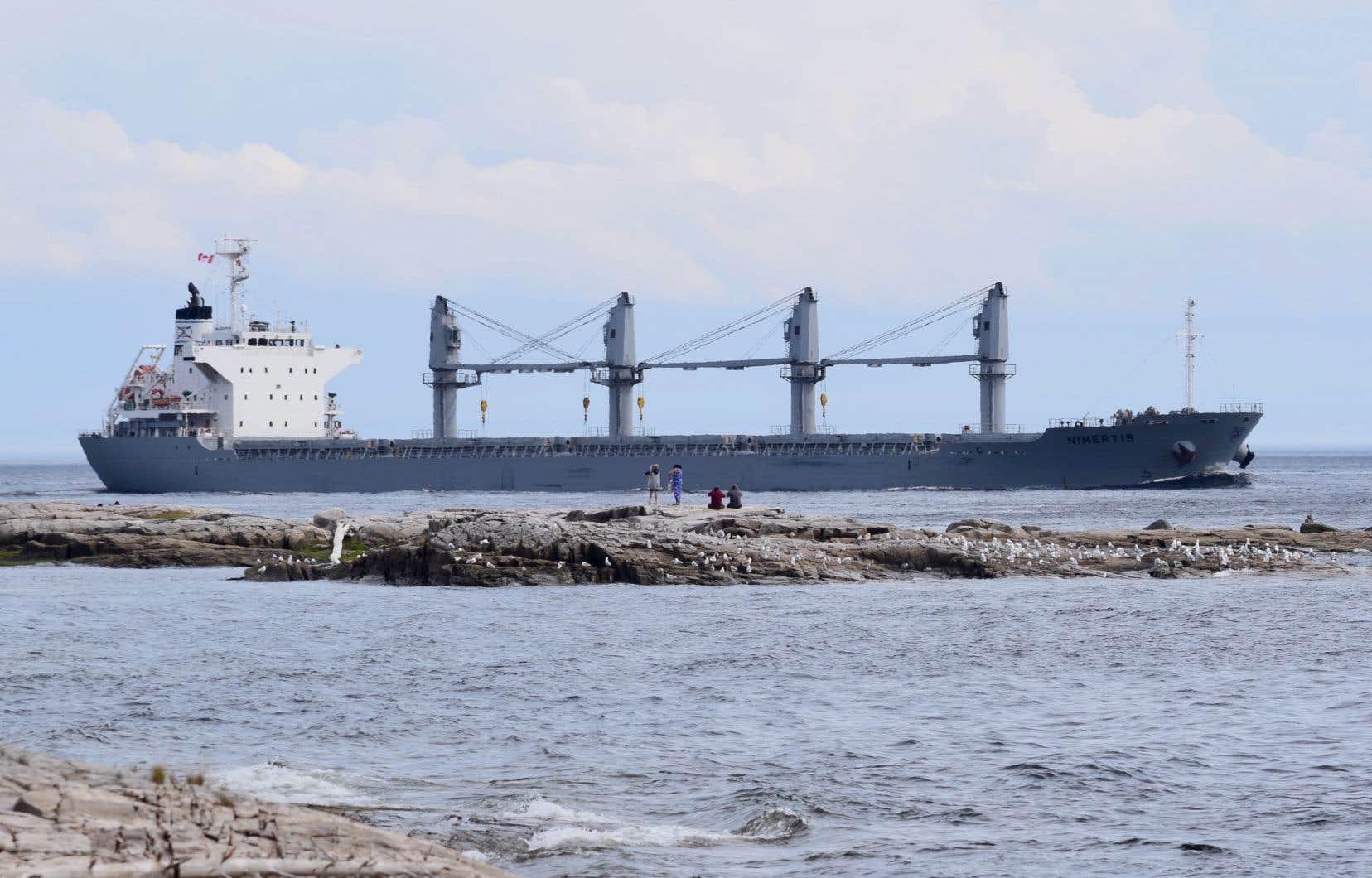 Les navires méthaniers du projet Énergie Saguenay, deux fois plus imposants que ce cargo, traverseraient le seul parc marin du Québec, habitat critique du béluga.