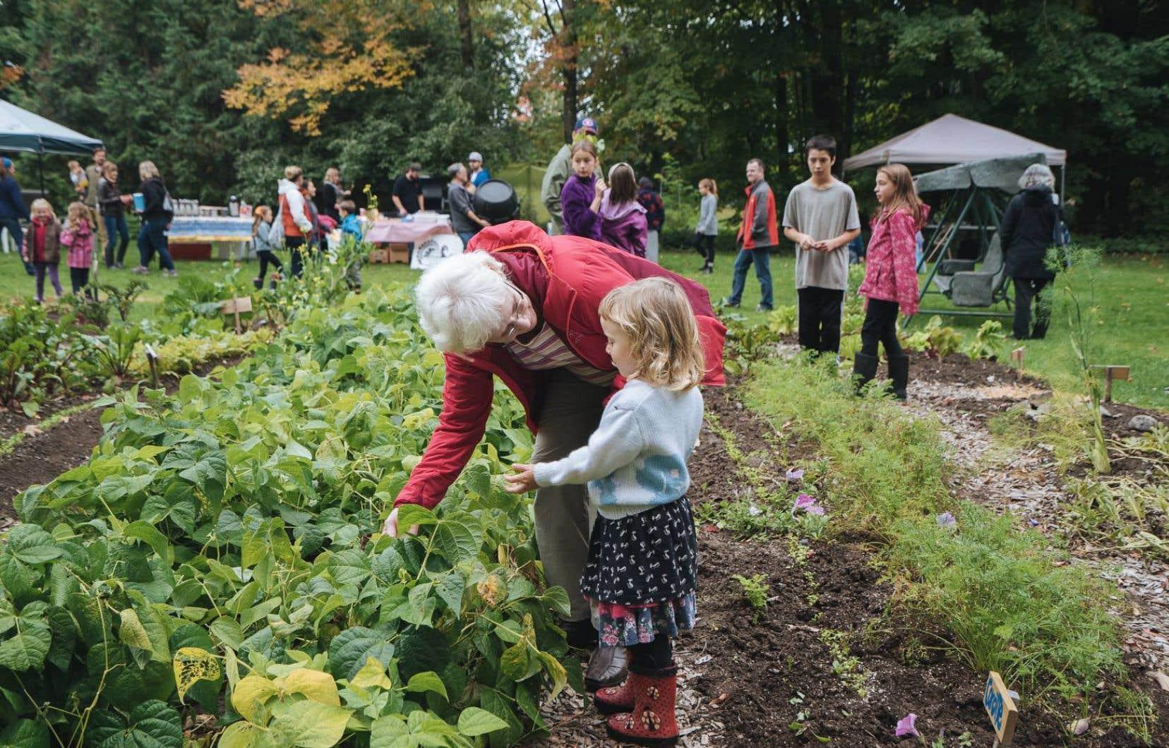 Le jardin de la Récolte des Générations se déploie sur le terrain de la résidence pour personnes âgées à Dunham, à 500 mètres de l'école primaire.