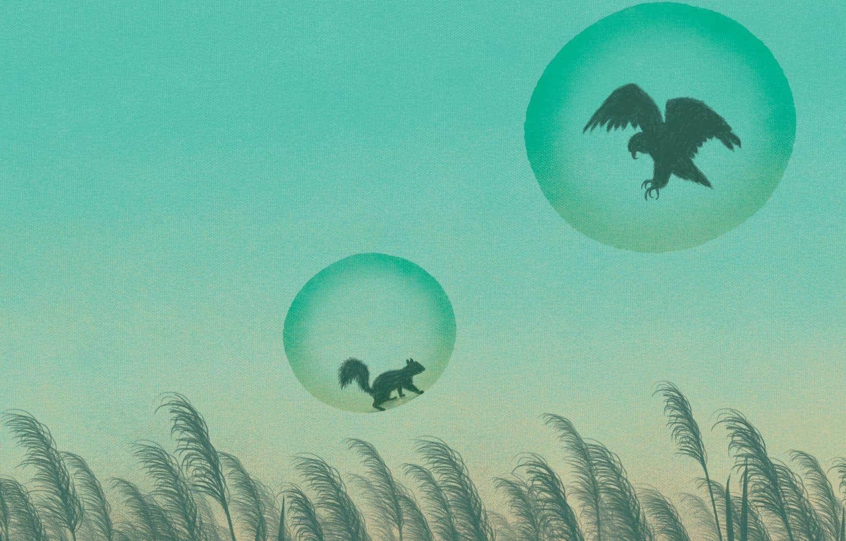 Quand deux bulles se fusionnent, le choc est d'abord brutal.