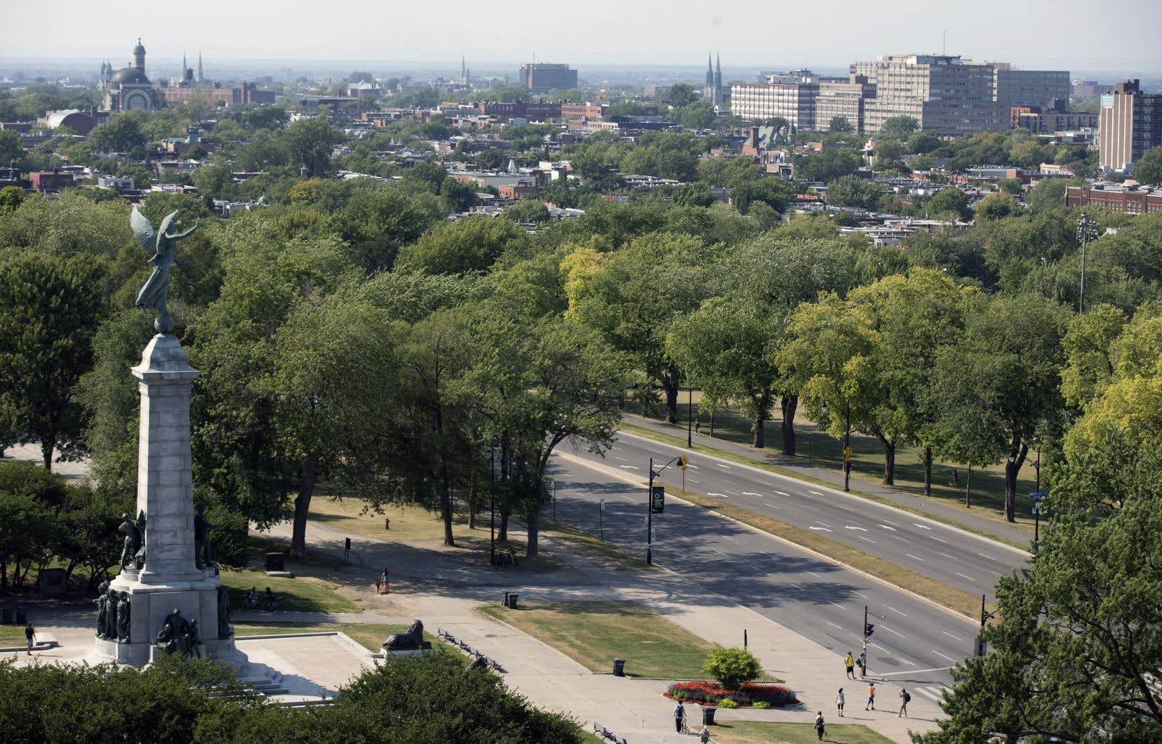 «Est-ce que la gestion du patrimoine végétal montréalais doit être laissée à une autorité municipale à la vision électoraliste et à des gestionnaires de cimetières qui dégainent vite les scies à chaînes?» demande l'auteur.