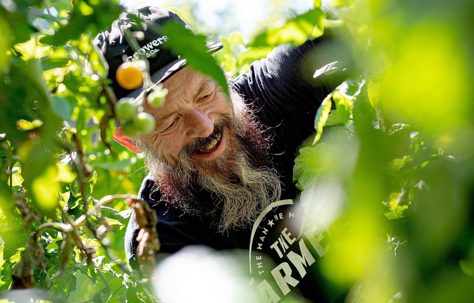 Réal Migneault dans son jardin contenant des variétés méconnues de fleurs comestibles, de légumes et d'herbes de toute sorte