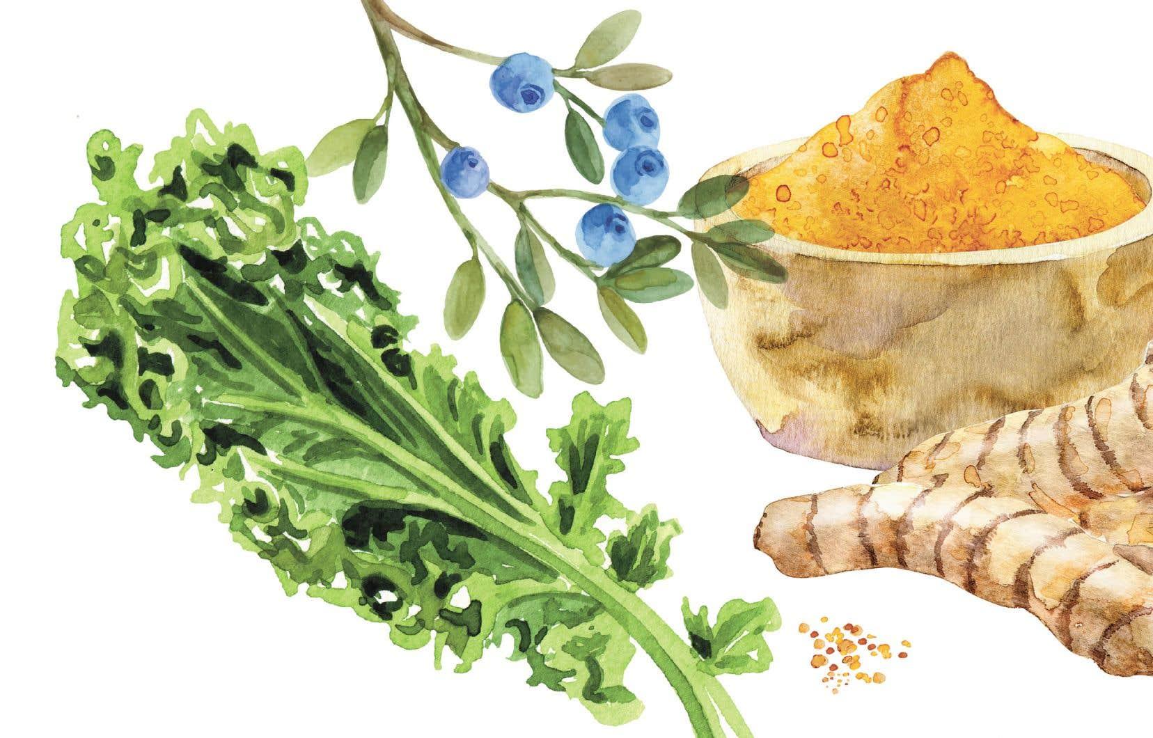 Le curcuma, les bleuets, le kale ont été élevés au rang de «superaliments». Qu'en est-il réellement?