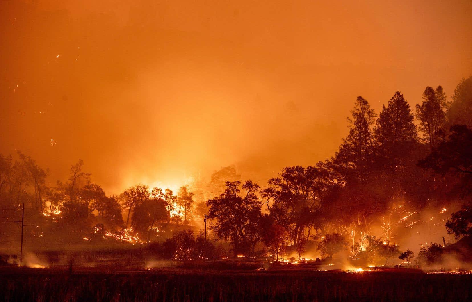 Des feux de forêt ravagent la côte ouest américaine depuis la mi-août, à un point tel que des pompiers québécois et canadiens ont été appelés en renfort.