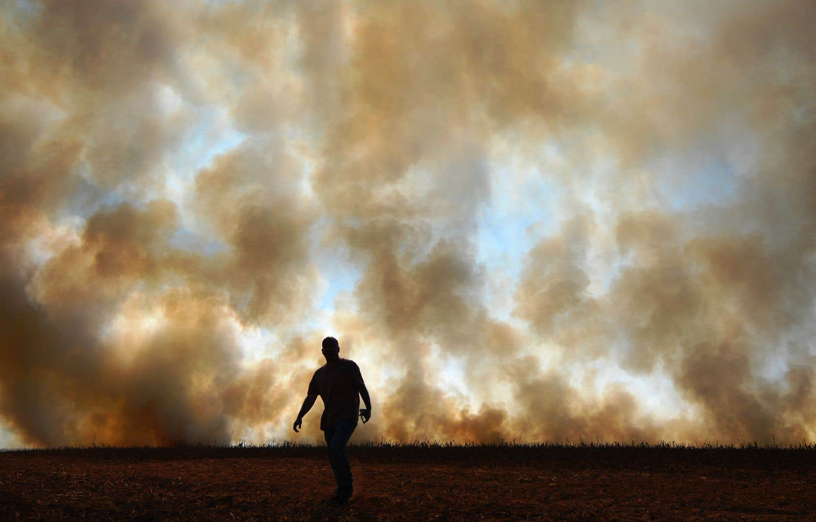 La déforestation en Amazonie brésilienne a atteint plus de 7000 km² de janvier à septembre.