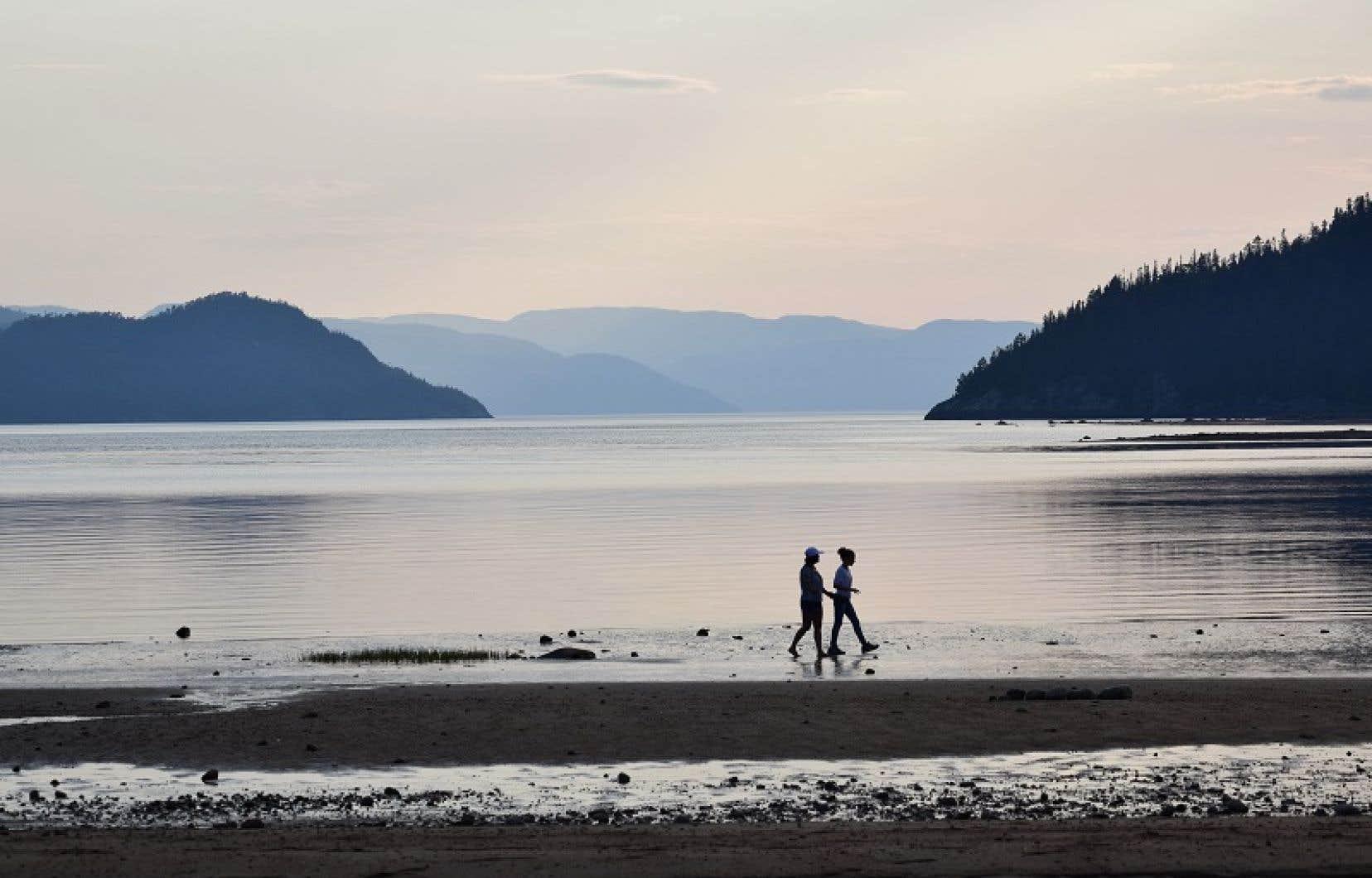 Plusieurs participants au BAPE se sont dits inquiets des répercussions de GNL Québec sur le paysage du fjord du Saguenay.