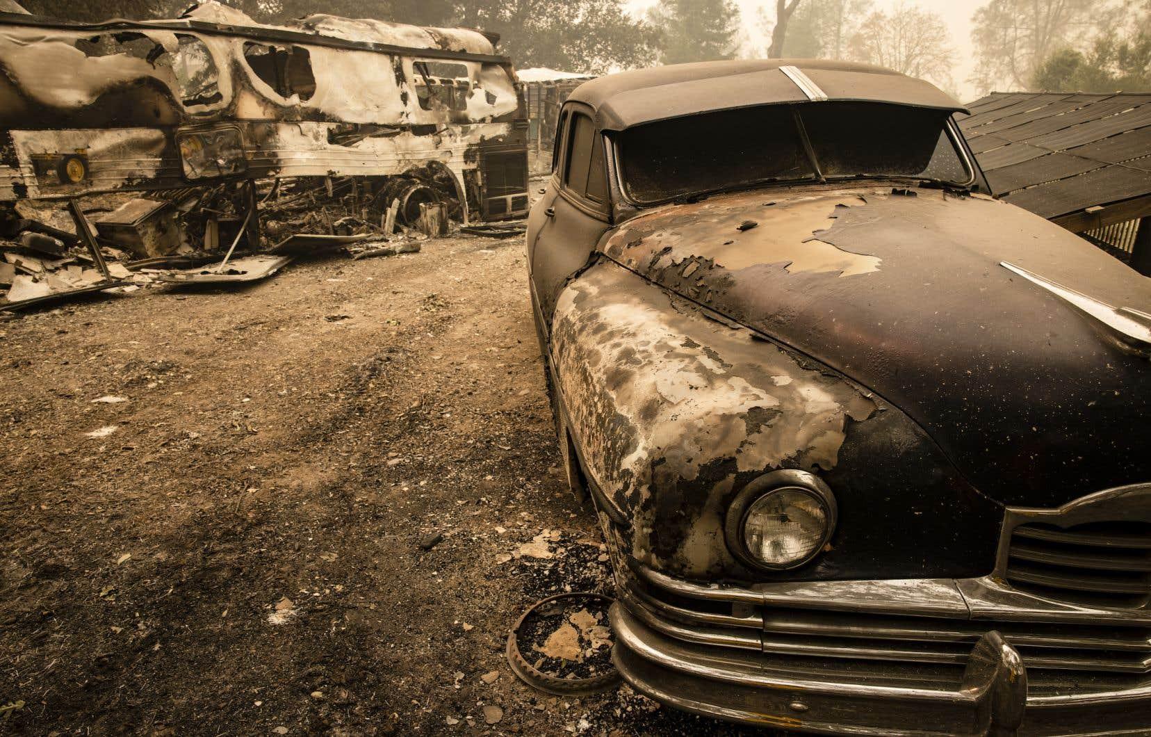 Les feux qui ont ravagé la côte ouest américaine cette année, et notamment la célèbre vallée de Napa, en Californie, illustrent les impacts des bouleversements climatiques aux États-Unis.