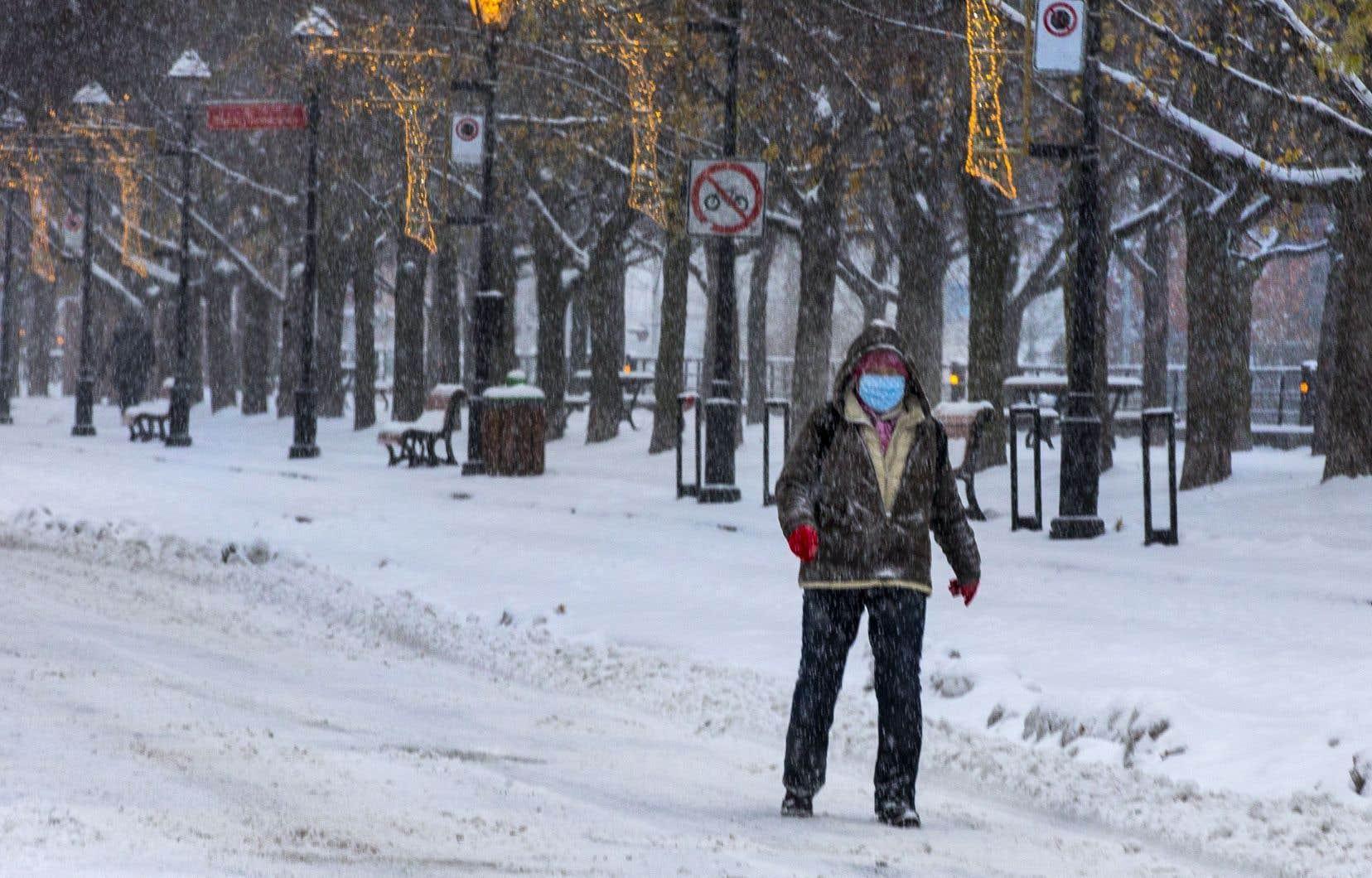 Tous les grands parcs montréalais offriront des sentiers pour le ski de fond, la randonnée et les raquettes.