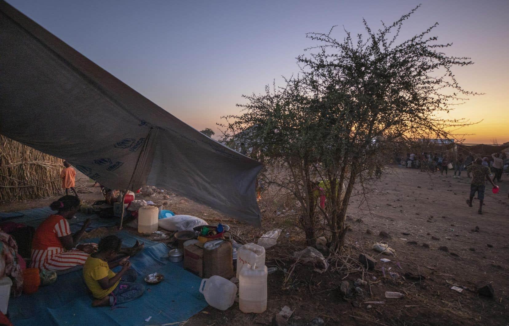 Plus de 43000 Éthiopiens ont fui le conflit vers le Soudan voisin, selon le Haut Commissariat des Nations unies pour les réfugiés.