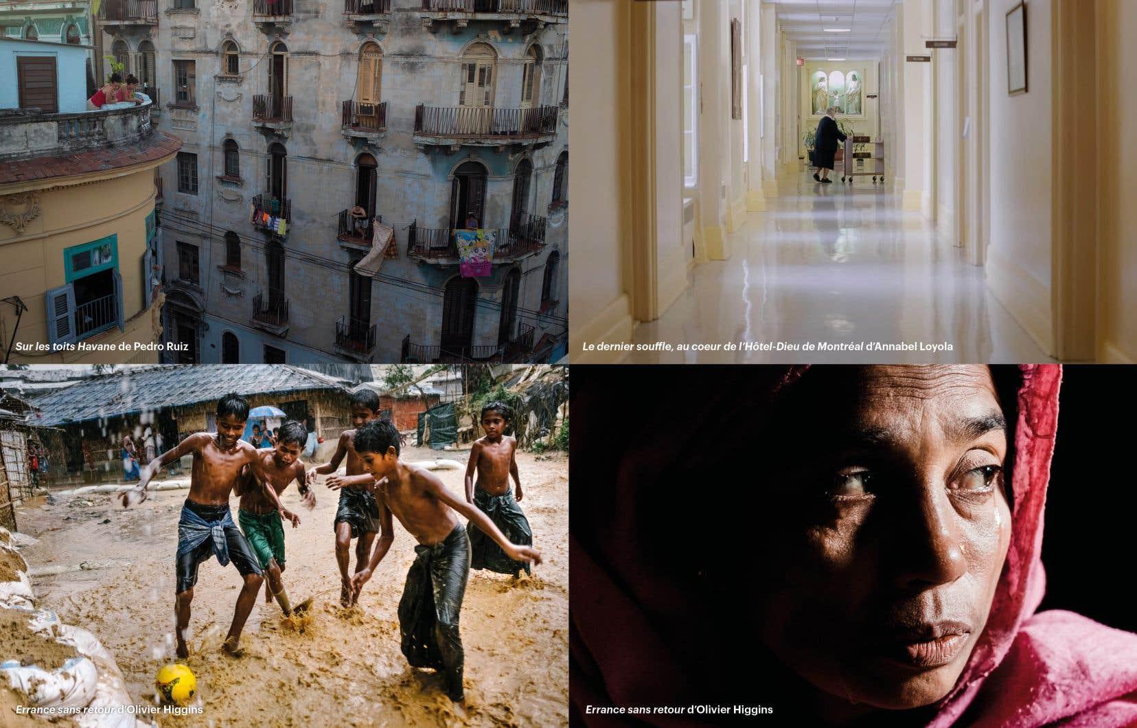 En haut à gauche SUR LES TOITS HAVANE (2018) de Pedro Ruiz, en haut à droite LE DERNIER SOUFFLE, AU COEUR DE L'HÔTEL-DIEU DE MONTRÉAL (2017) de Annabel Loyola, en basERRANCE SANS RETOUR (2020) d'Olivier Higgins, avec la collaboration de Mélanie Carrier.