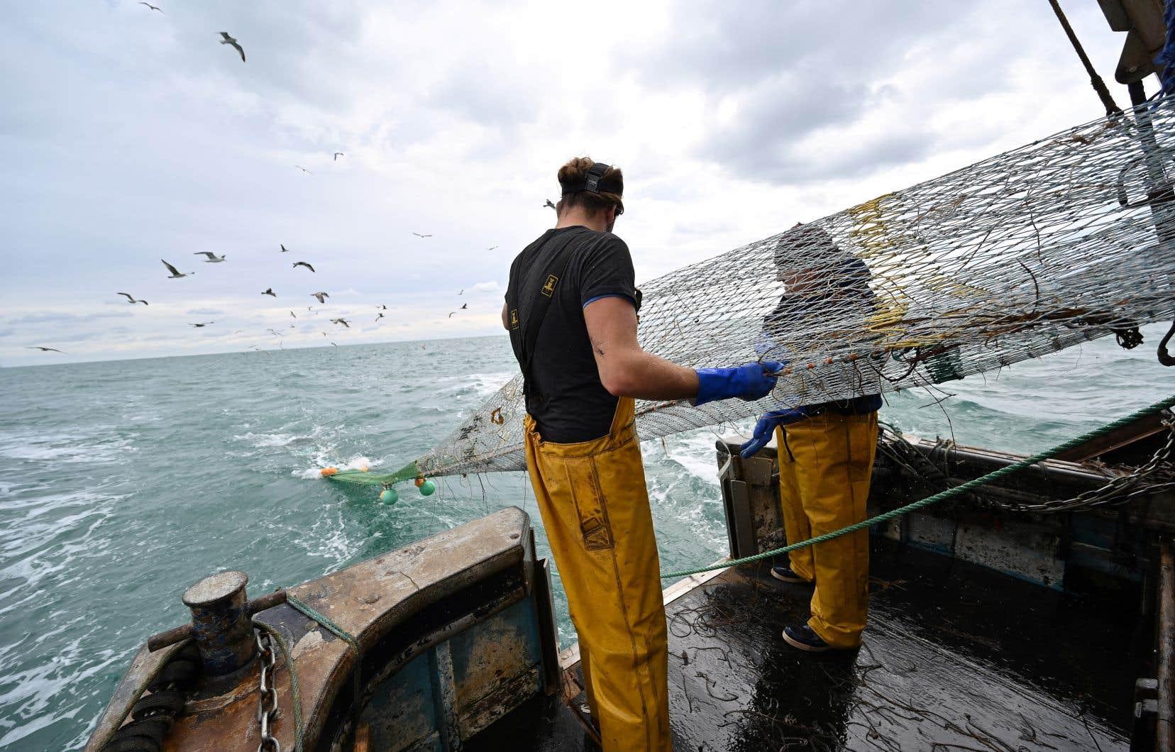 Les tractations se concentrent sur le partage des quelque 650millions d'euros de produits pêchés chaque année par l'UE dans les eaux britanniques et la durée de la période d'adaptation pour les pêcheurs européens. Pour les Britanniques, les produits de pêche dans les eaux européennes représentent environ 110millions d'euros.