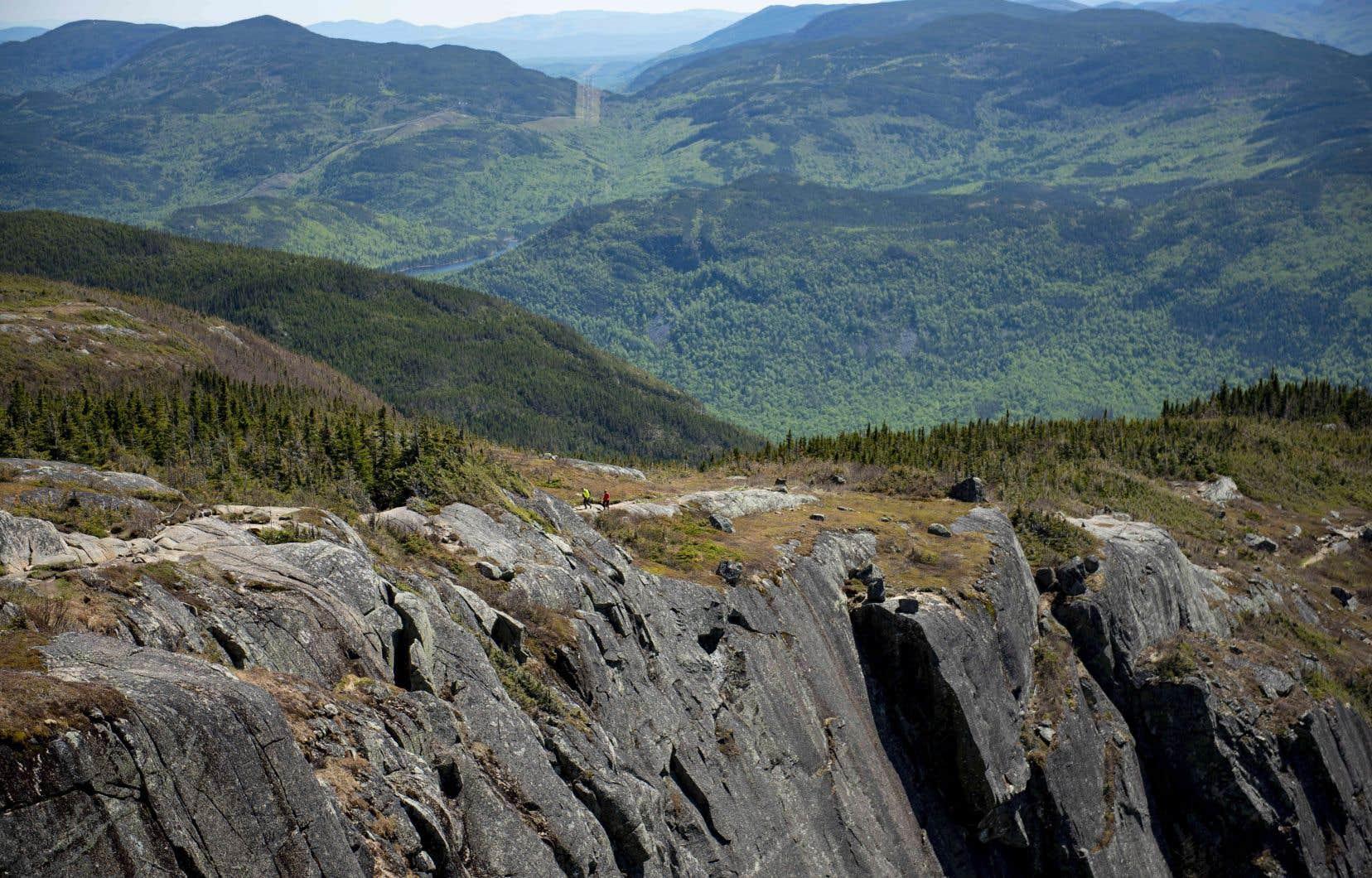 La moitié des détenteurs d'une carte annuelle Parcs nationaux Édition Bonjour Québec ont affirmé avoir pratiqué plus d'activités de plein air et de sorties en nature qu'avant la pandémie.