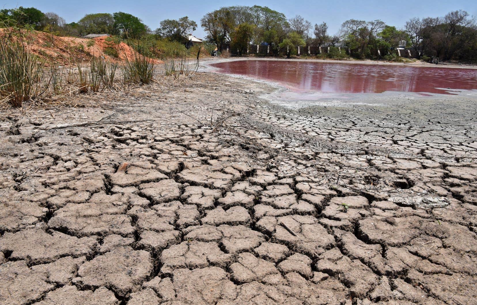 Le fonds LDN a été créé en 2017 dans le cadre de la Convention des Nations unies sur la lutte contre la désertification.