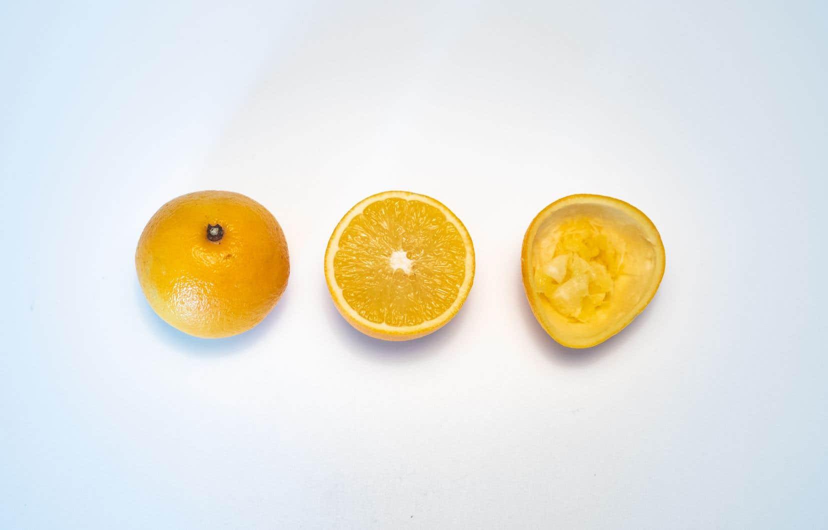 Entre les entreprises Loop et Noroi, l'orange et sa pelure ont plusieurs vies.