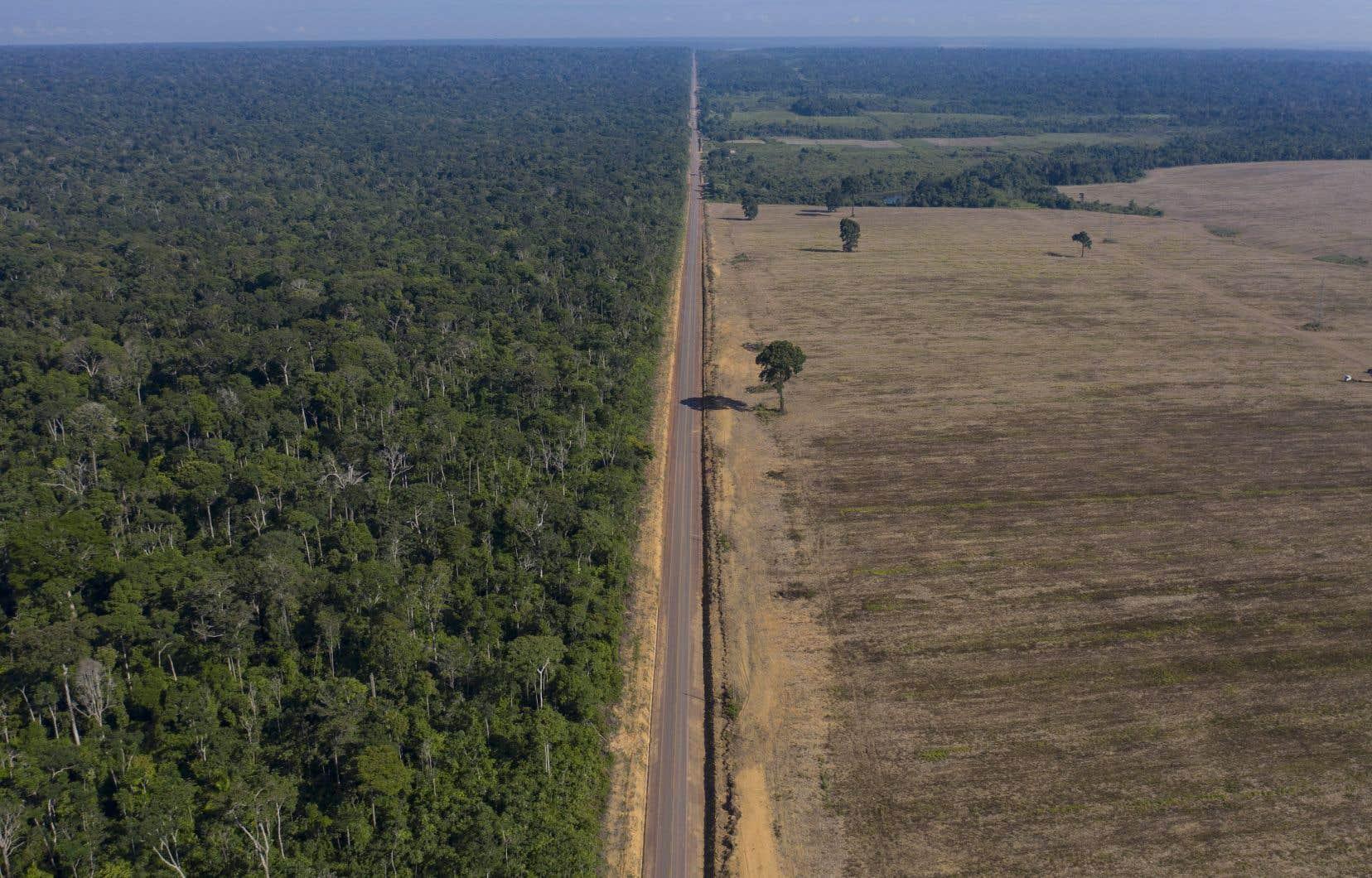Une vue aérienne de la route BR-163, au Brésil, symbole éloquent de la déforestation accélérée de l'Amazonie. Selon la professeure Sabrina Doyon, la justice sociale et la justice environnementale doivent être remises au cœur de l'étude de l'anthropocène en anthropologie.