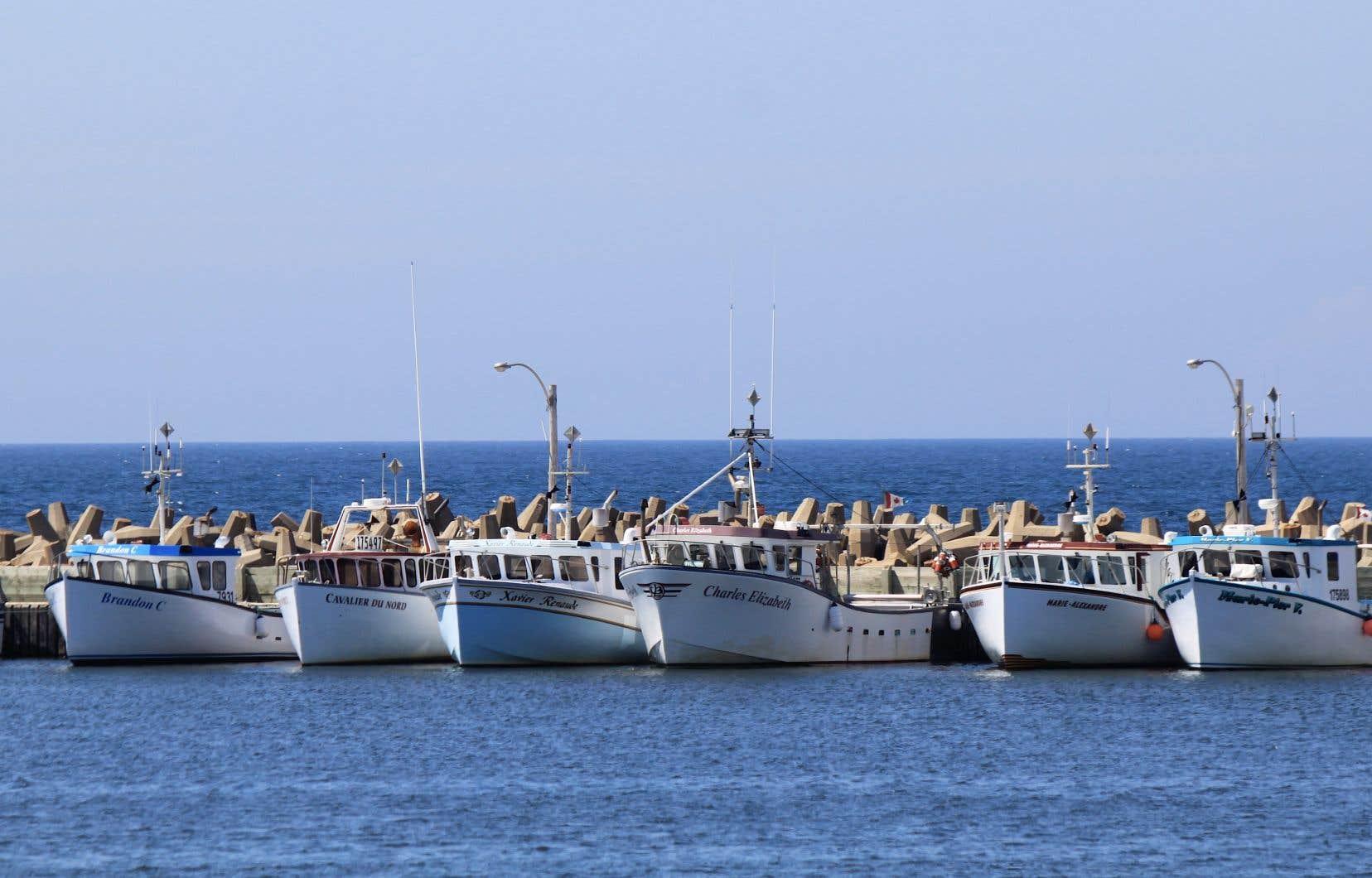 La perspective de projets pétroliers dans le golfe du Saint-Laurent a déjà soulevé des inquiétudes pour l'industrie de la pêche.