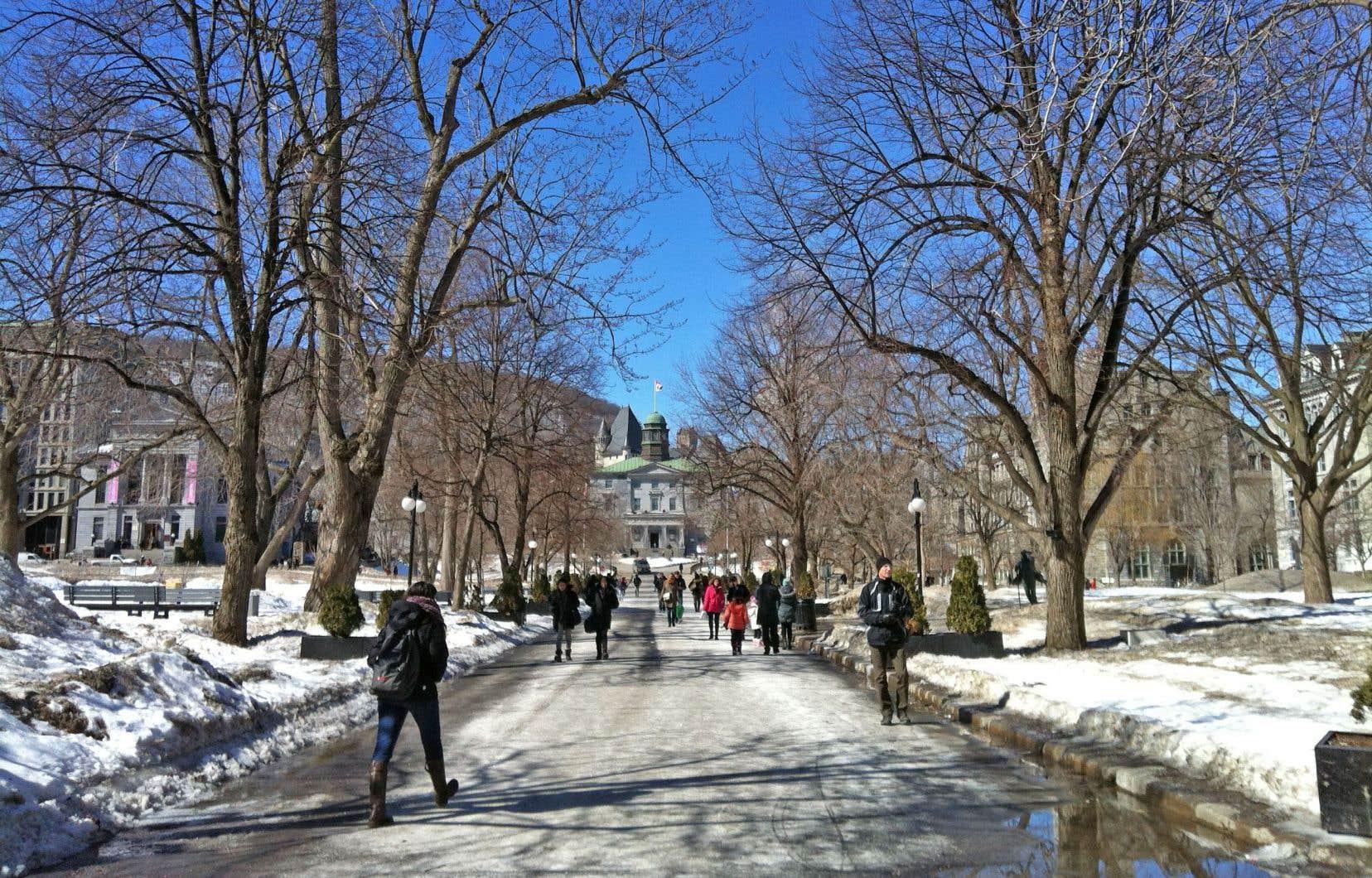 L'auteur s'est attiré des critiques de la part de collègues universitaires après avoir remis en question une procédure d'admission basée sur des critères démographiques à McGill.