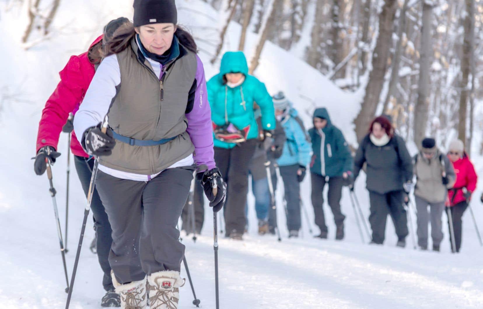 La marche nordique sollicite les groupes musculaires des jambes, mais aussi du haut du corps grâce à l'utilisation des bâtons de marche.
