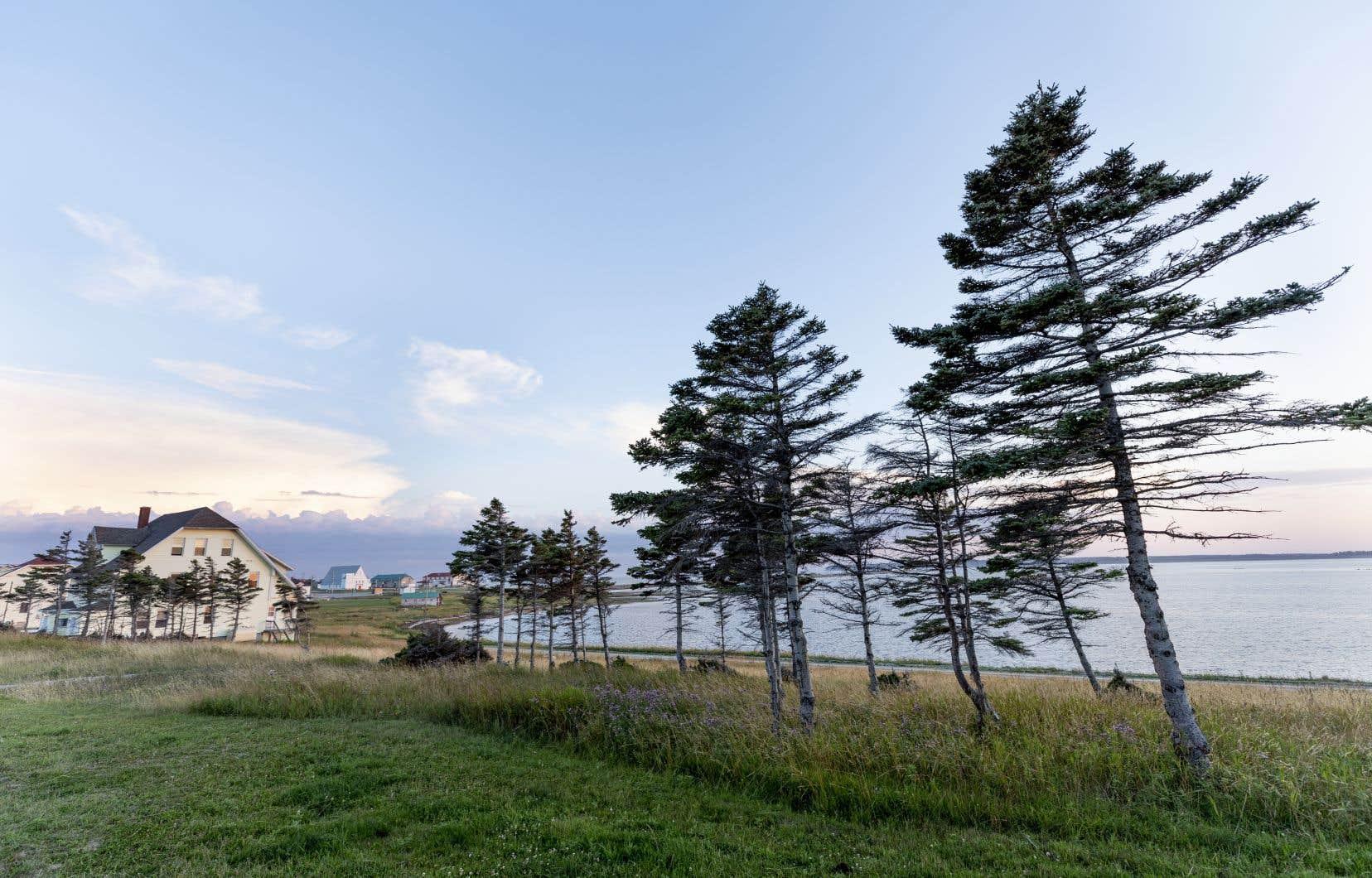 Avec ses villages abandonnés et sa faune exceptionnelle, l'île d'Anticosti deviendra-t-elle l'eldorado des voyageurs en mal d'exotisme?
