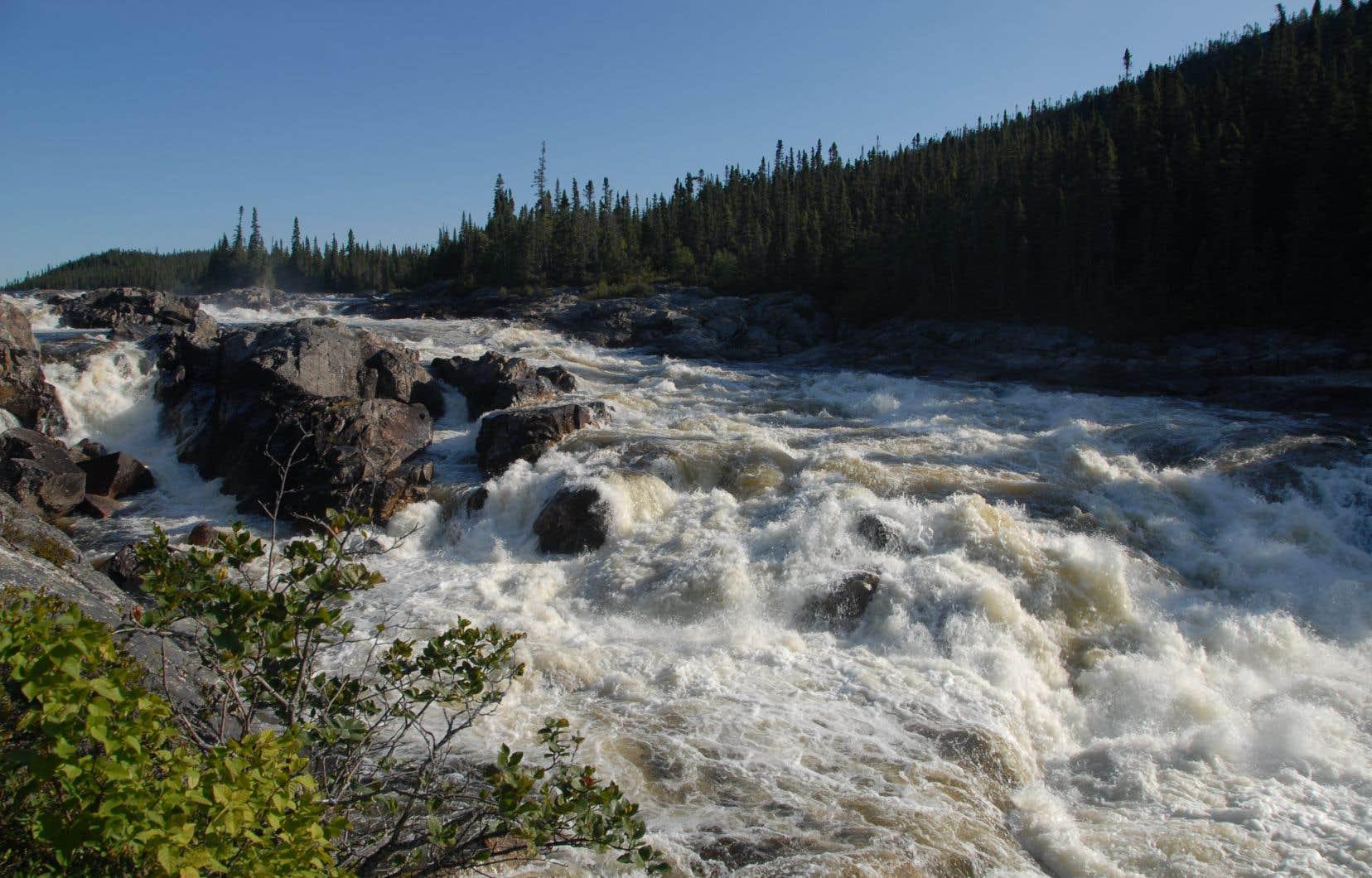 La rivière Magpie est une destination de renommée mondiale pour le rafting en eau vive. Un courant agité qui pourrait attirer Hydro-Québec dans le futur.