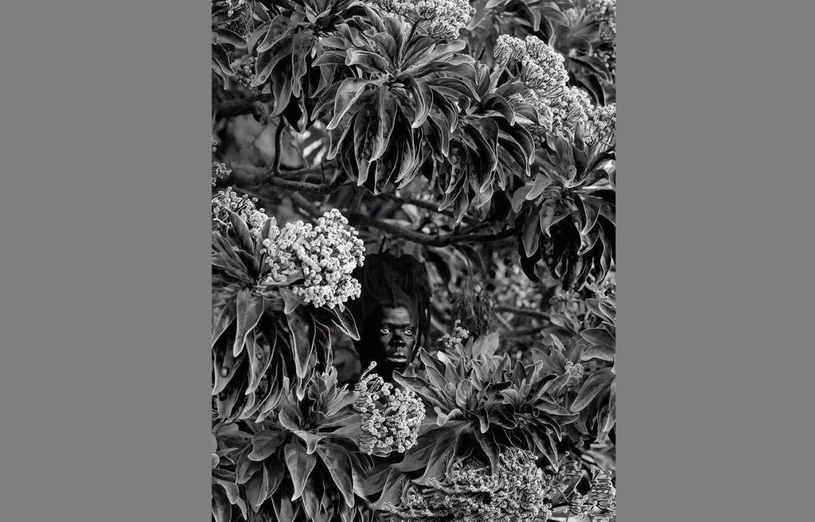 La nouvelle exposition rassemble les oeuvres récemment acquises par le musée, dont Qhamukile, Mauritius (2019).