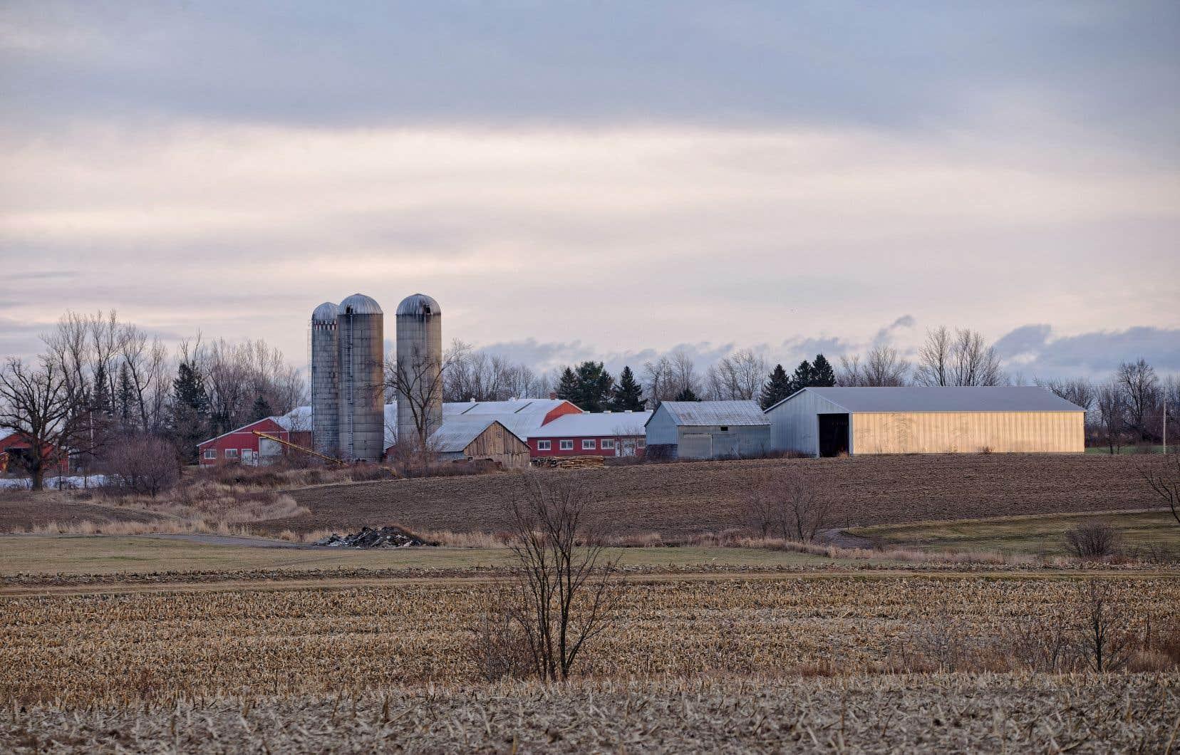 Les terres coûtent en ce moment trop cher au Québec par rapport à ce qu'elles peuvent rapporter à court ou moyen terme, soulignent de nombreux agriculteurs. Il est donc difficile et risqué pour les jeunes entrepreneurs de se permettre de tels achats.