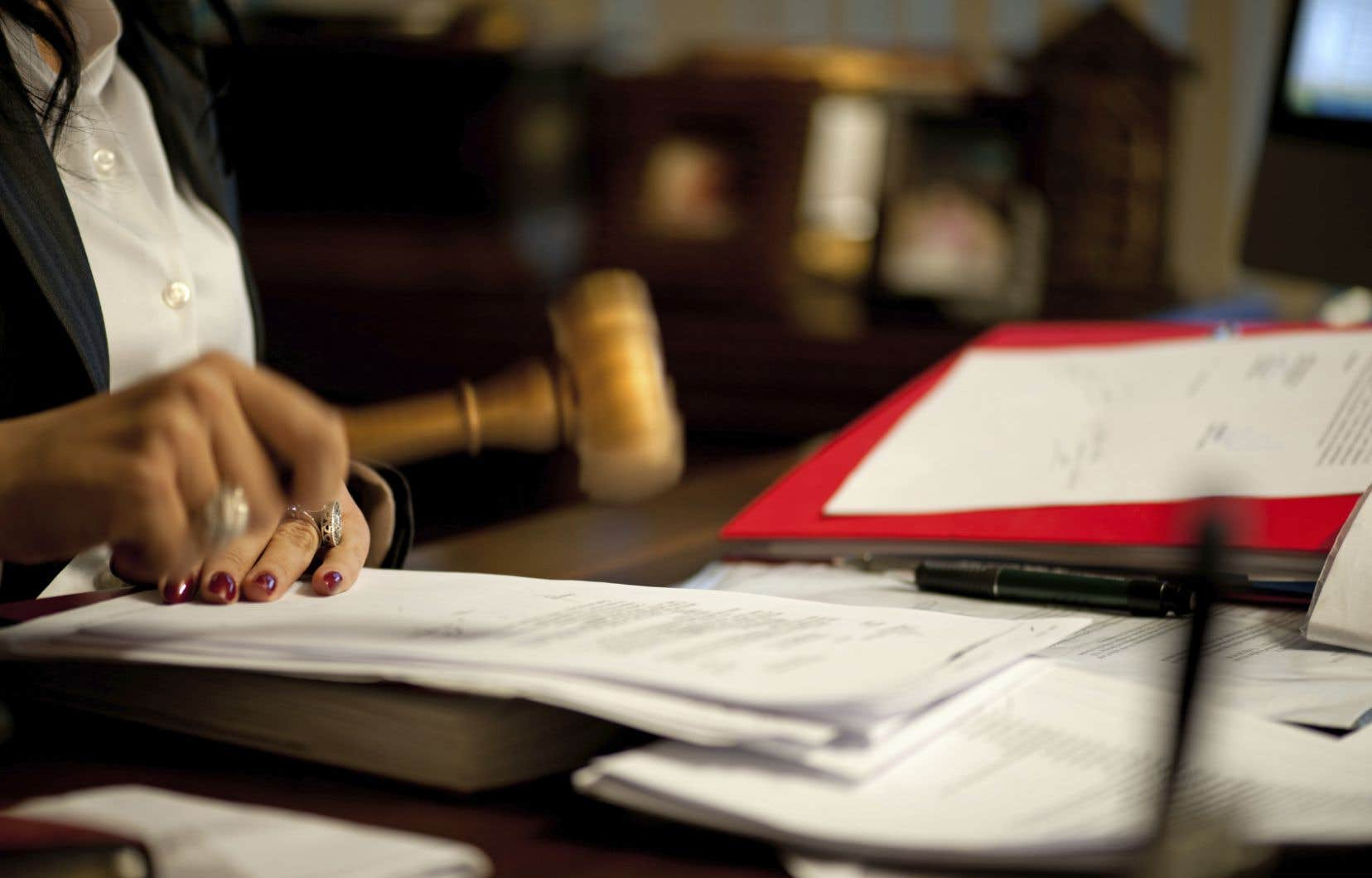 «La diversification du rôle joué par les juristes au sein des cliniques juridiques et des organismes sans but lucratif pourrait contribuer à réduire les inégalités d'accès au droit et à la justice», estime l'auteur.