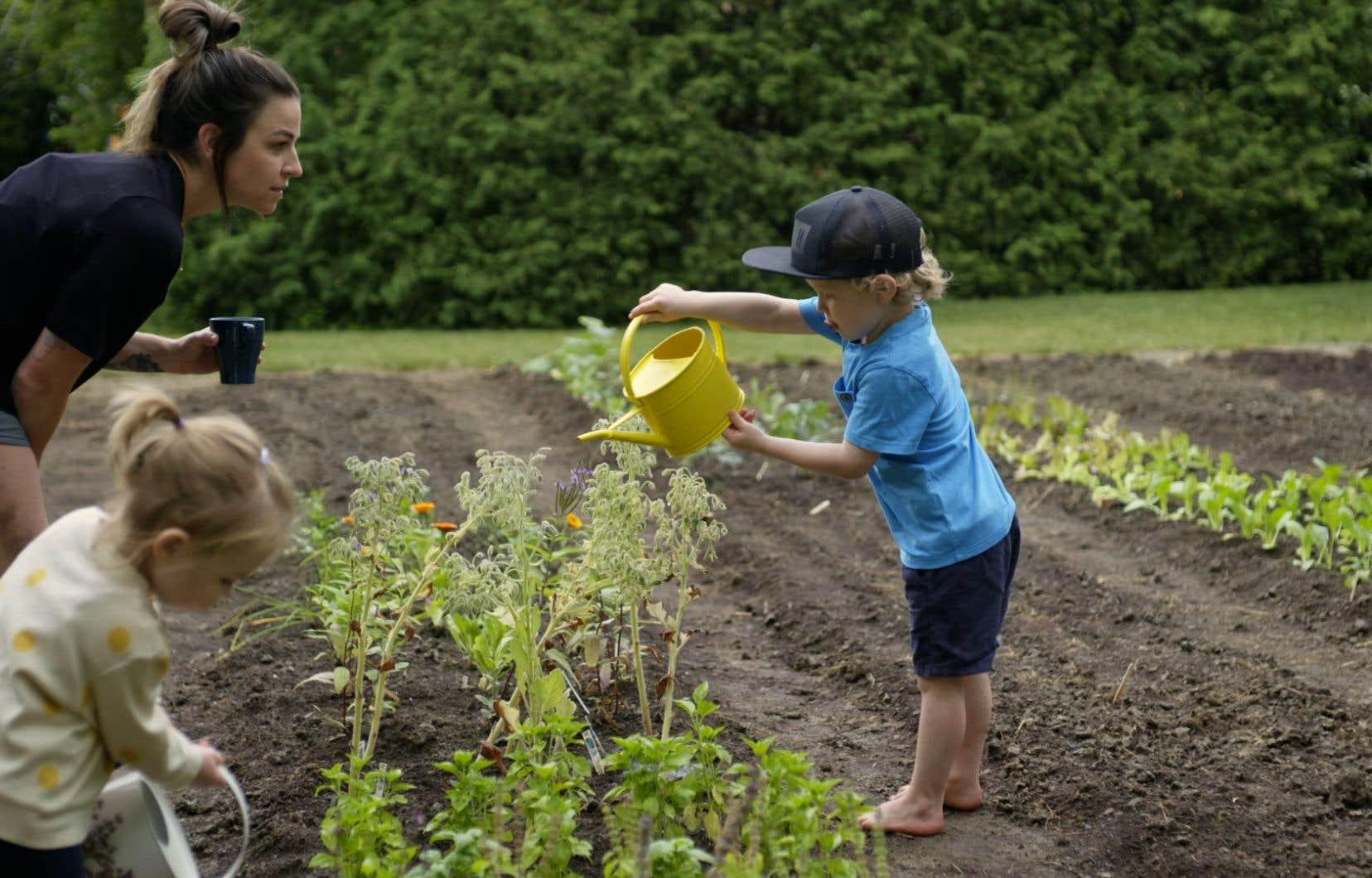La nourrissante série documentaire suit deux familles prêtes à mettre du temps, du muscle, du cœur et de la sueur pour vivre une révolution agricole à petite échelle.