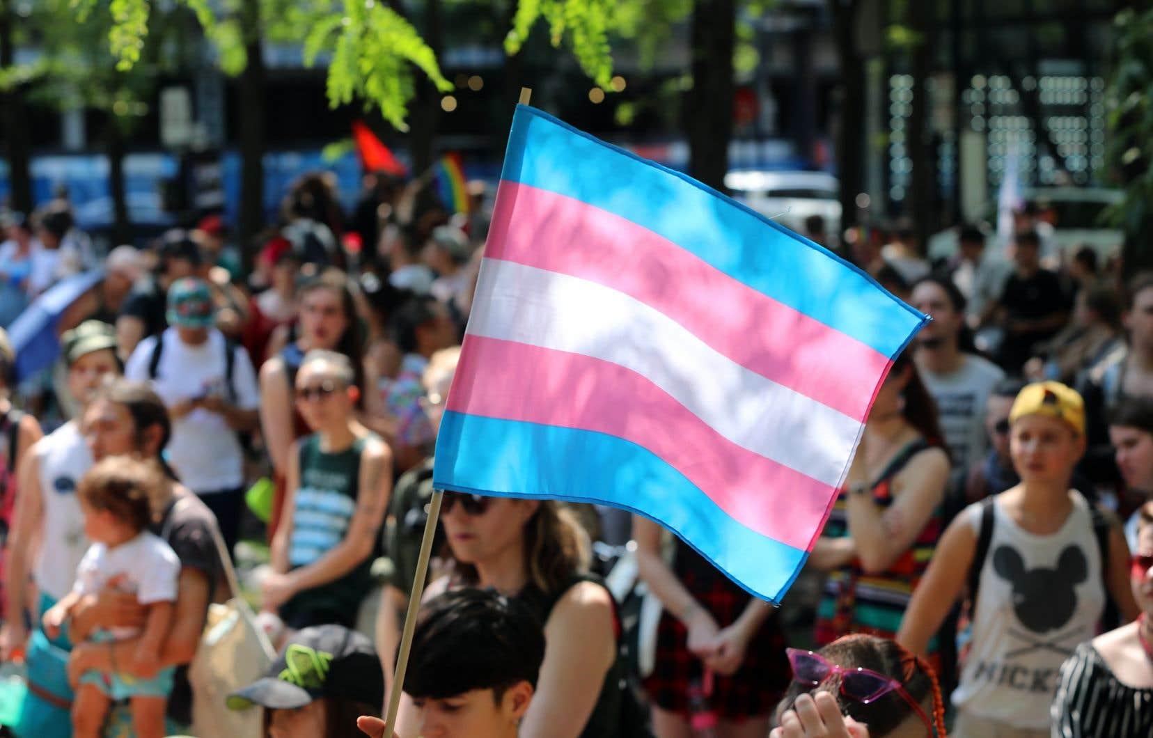 Une marche pour les droits des personnes trans au  centre-ville de Montréal, à  l'été 2018