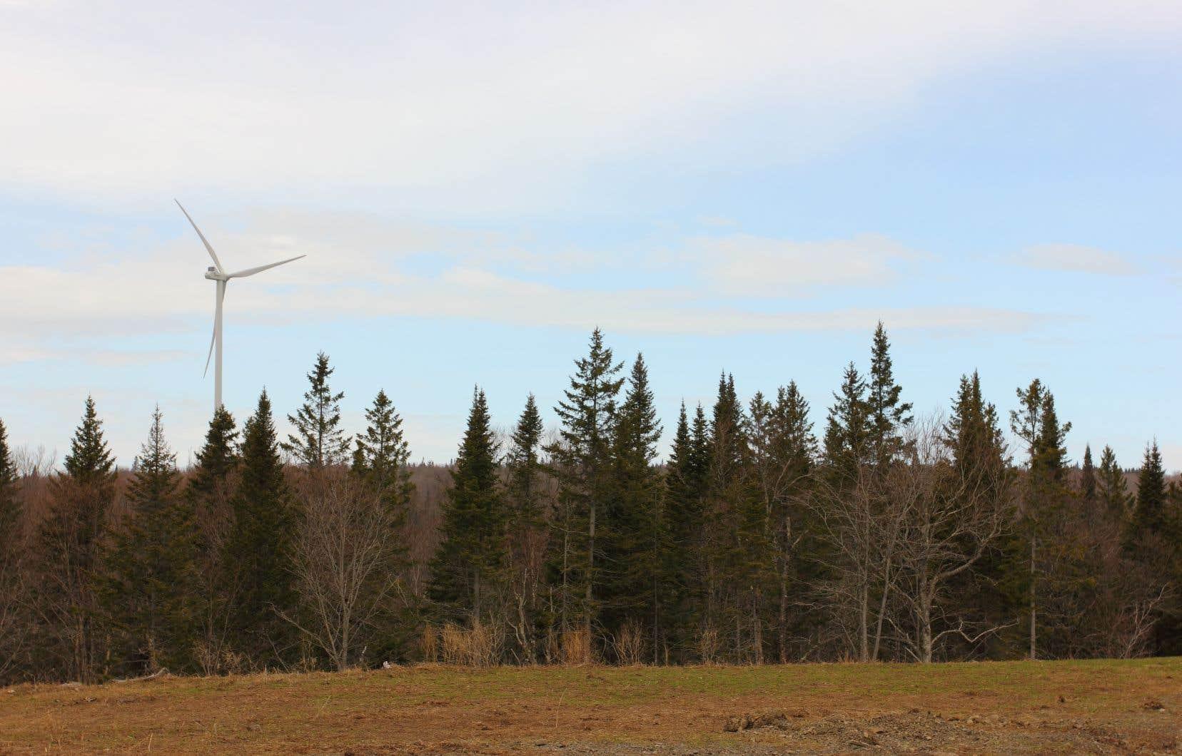 Le parc éolien Nicolas-Riou, situé dans la région du Bas-Saint-Laurent