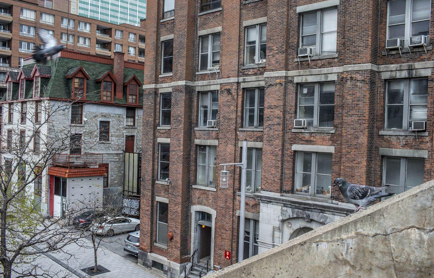 L'ancien bâtiment de la British and Canadian School (en blanc, à gauche), conçu en 1826, ainsi que l'imposant immeuble intégrant une partie de l'église Free Presbyterian (à droite), ont été vendu en mars aux promoteurs Brandon Shiller et Jeremy Kornbluth, de Hillpark Capital, pour 9,2 M$.