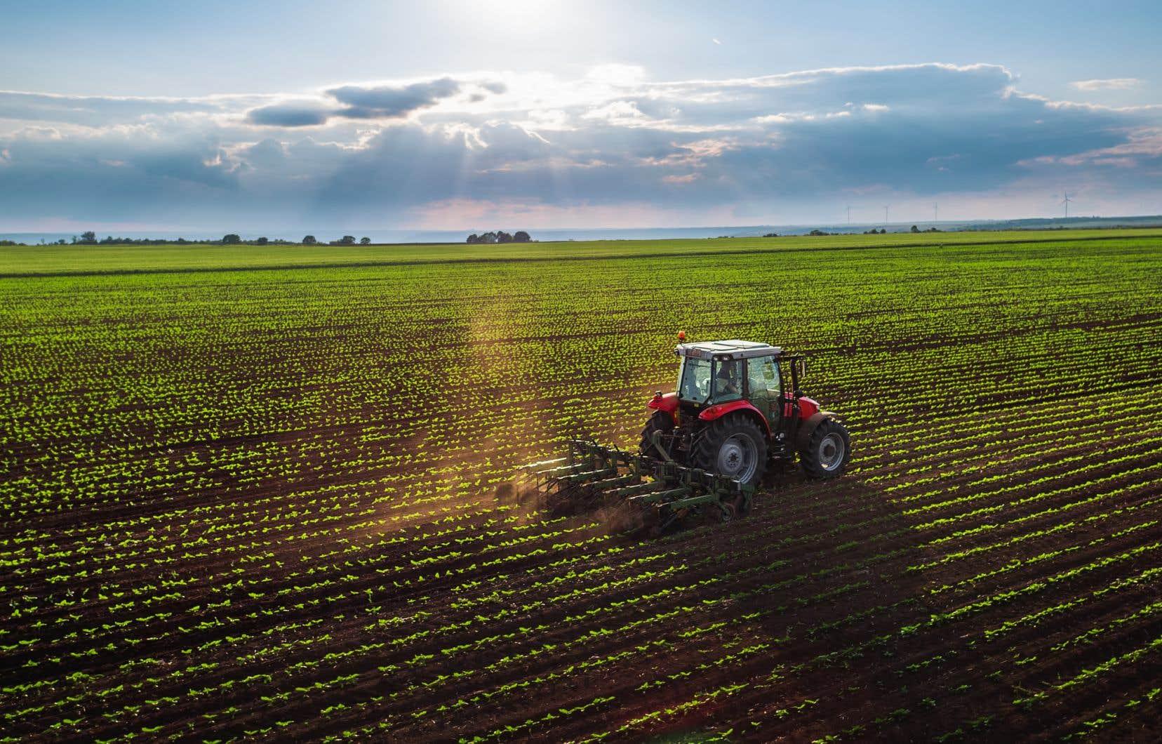 «En cinqans seulement, il y aura eu deux décrets et plus de 220 hectares dézonés parmi les meilleures terres agricoles du Québec», écrit l'autrice.