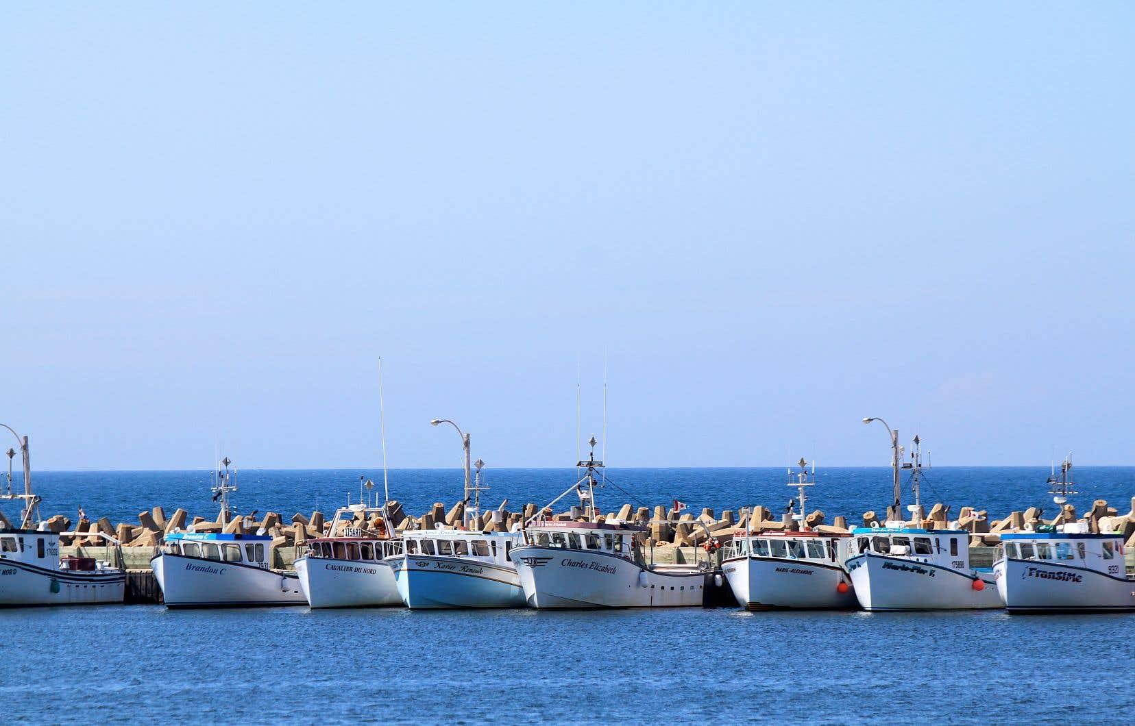 Pêches et Océans Canada a annoncé la fermeture de zones de pêche situées près des Îles-de-la-Madeleine. Plus d'une centaine de pêcheurs ont dû déplacer leurs casiers au cours des derniers jours.