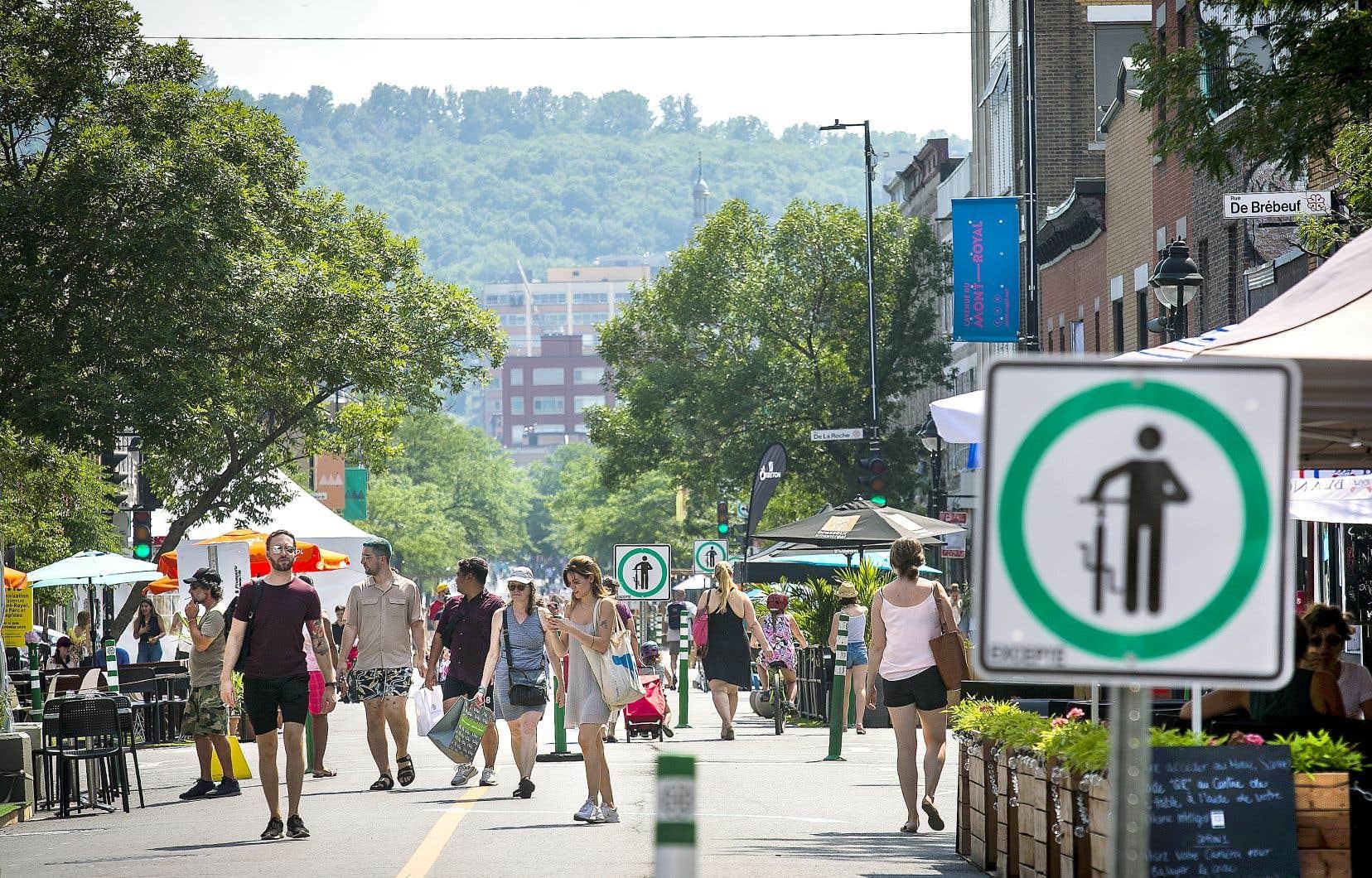 L'an dernier, les cyclistes zigzaguant à haute vitesse entre les piétons sur l'avenue du Mont-Royal avaient suscité beaucoup de mécontentement. L'artère montréalaise sera piétonne à compter du 18juin cette année.
