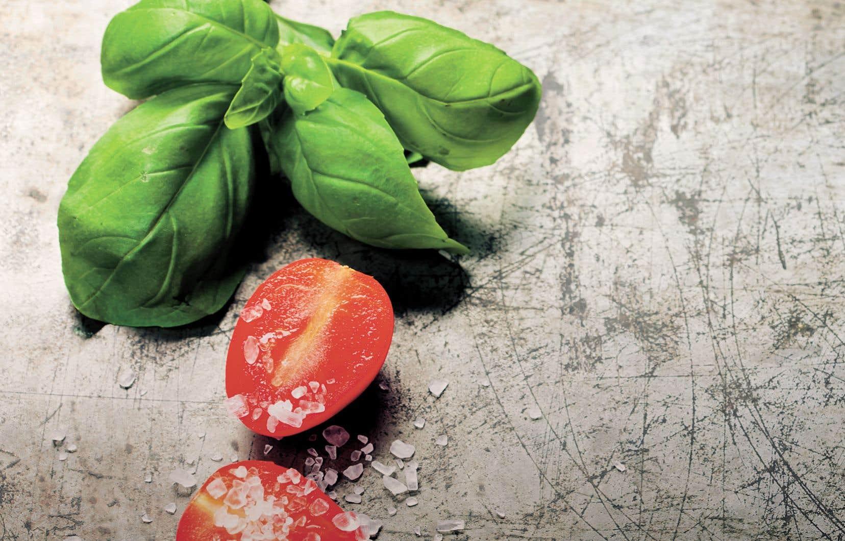 La communauté italienne a durablement influé les mœurs culinaires des Québécois.