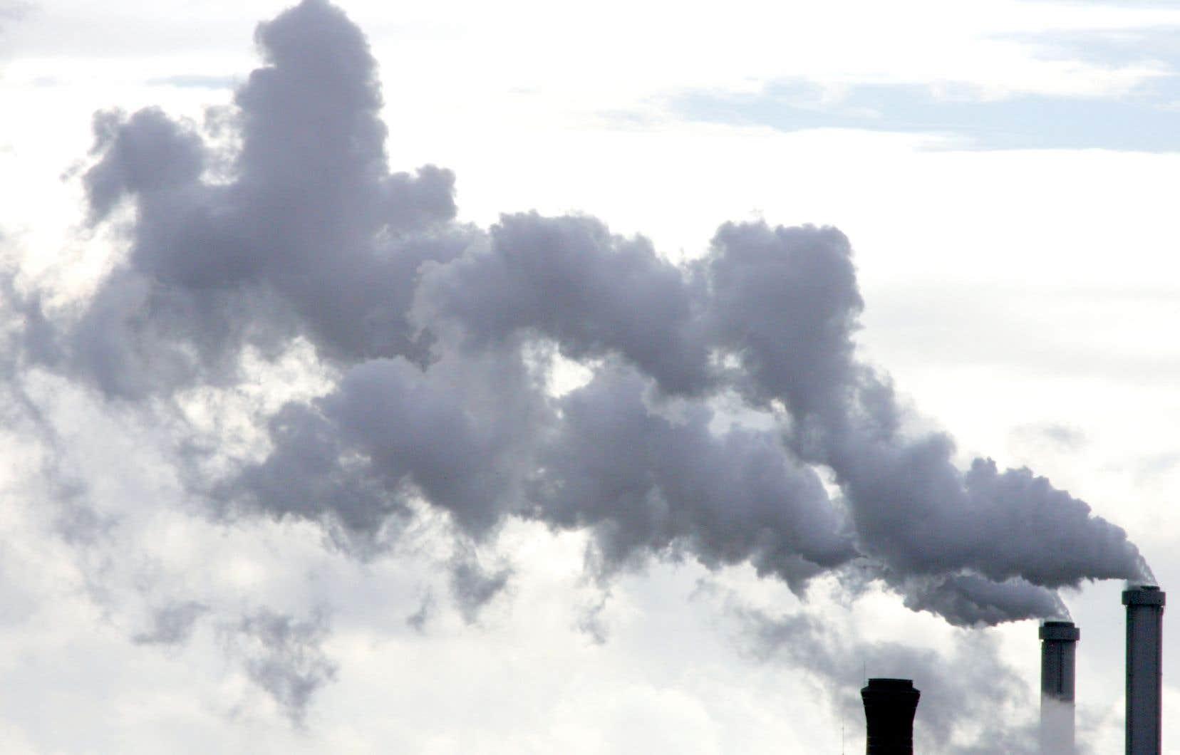 L'objectif est de permettre de mieux évaluer l'impact financier de la crise climatique et d'accompagner la transition verte des pays qui veulent être neutres en carbone en 2050.